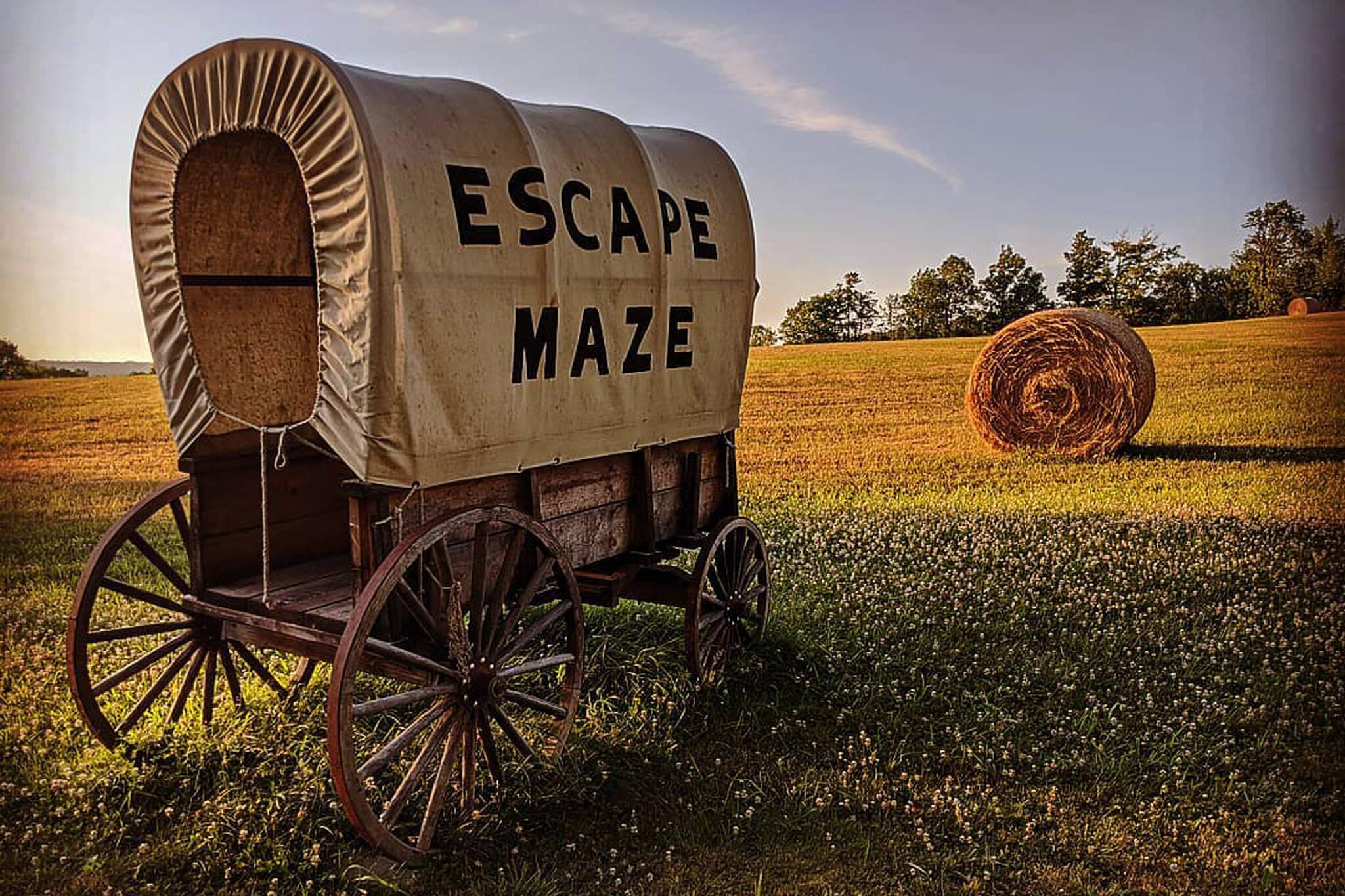 escape maze peterborough