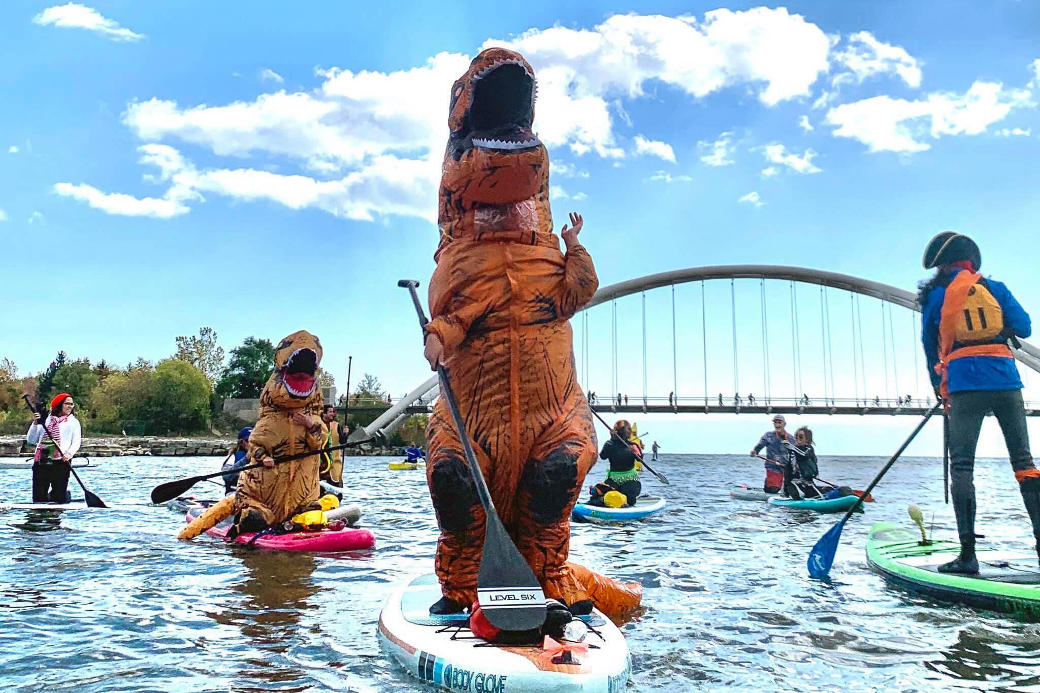 paddleboard costumes toronto