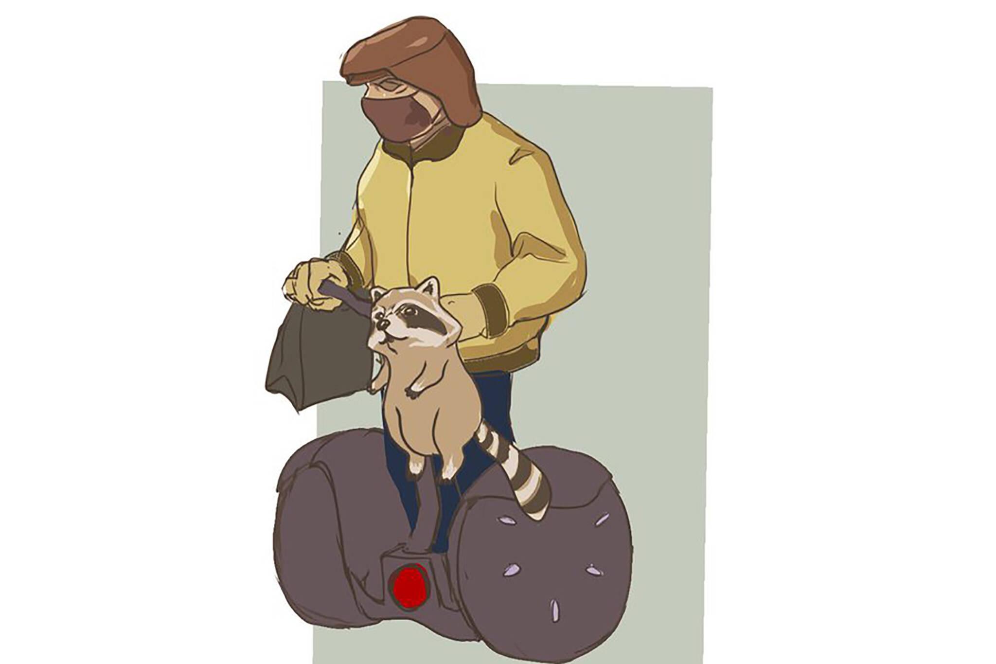 segway raccoon toronto