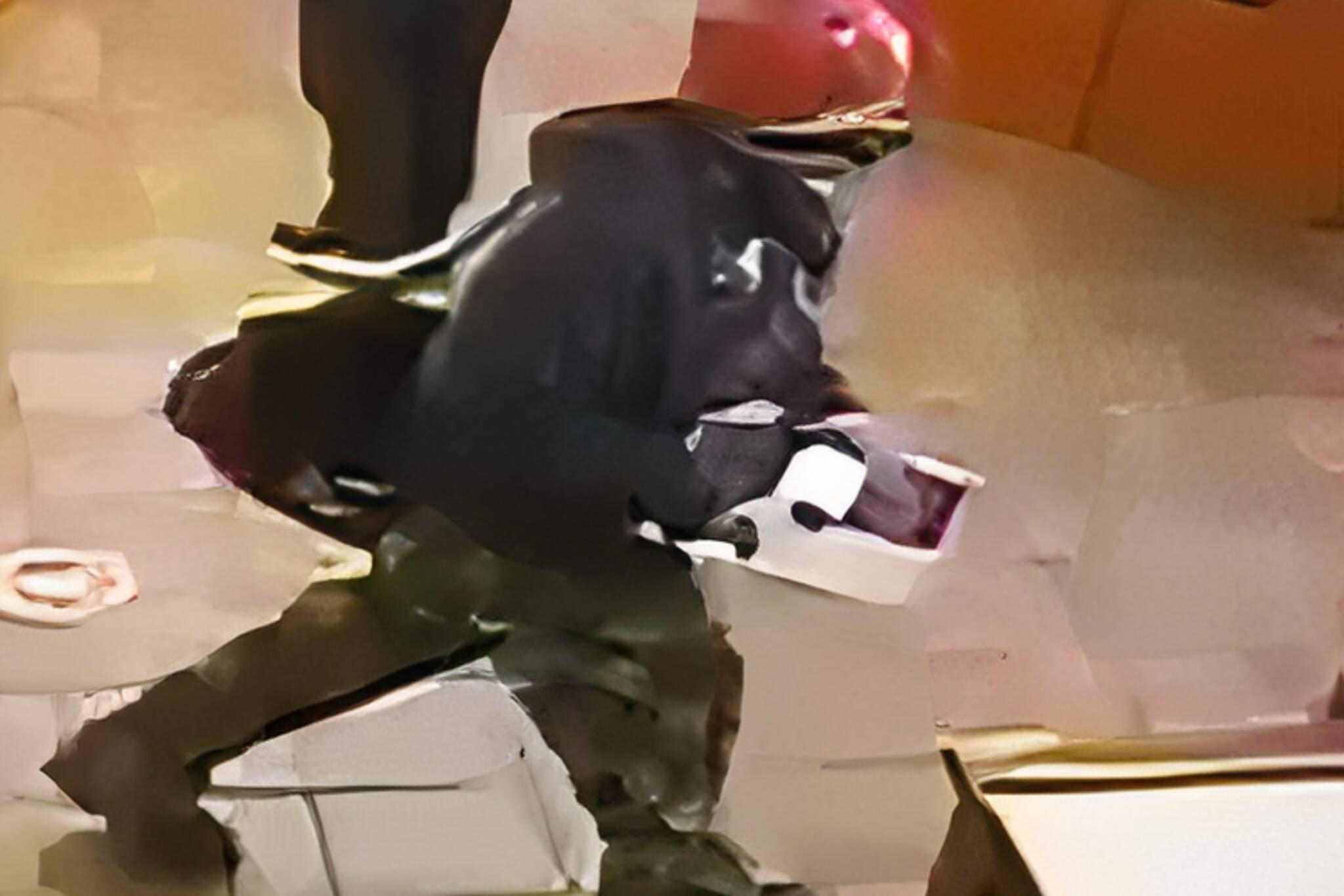 stolen poppy donation box