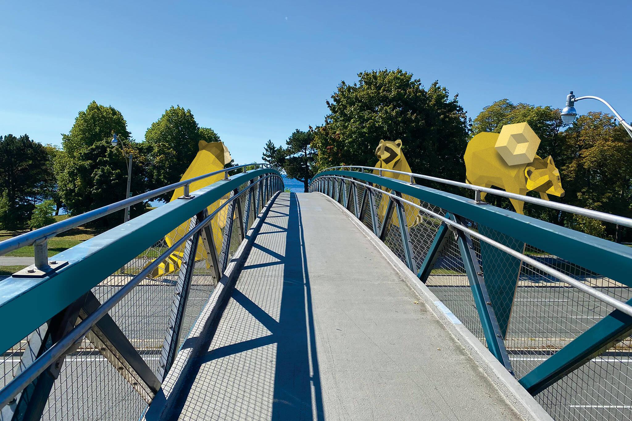 toronto raccoon bridge