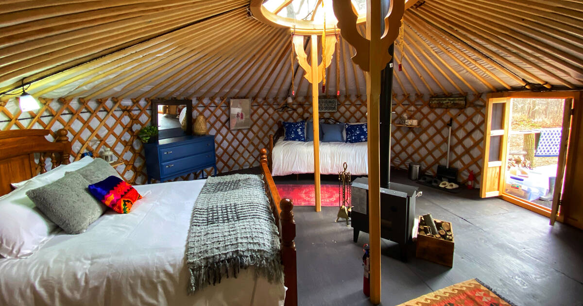 You can stay overnight in a yurt surrounded by alpacas in Ontario