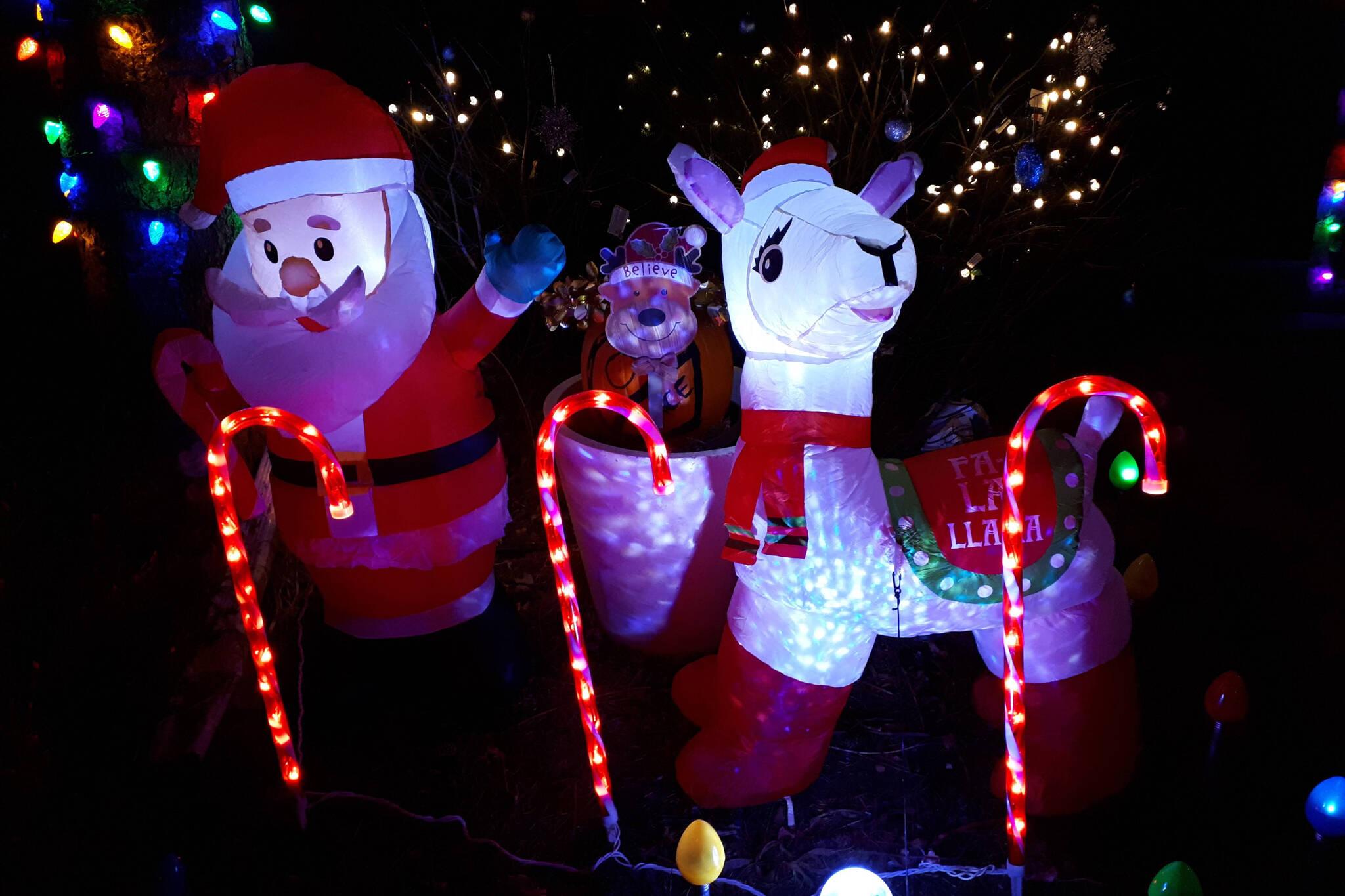 llama lights