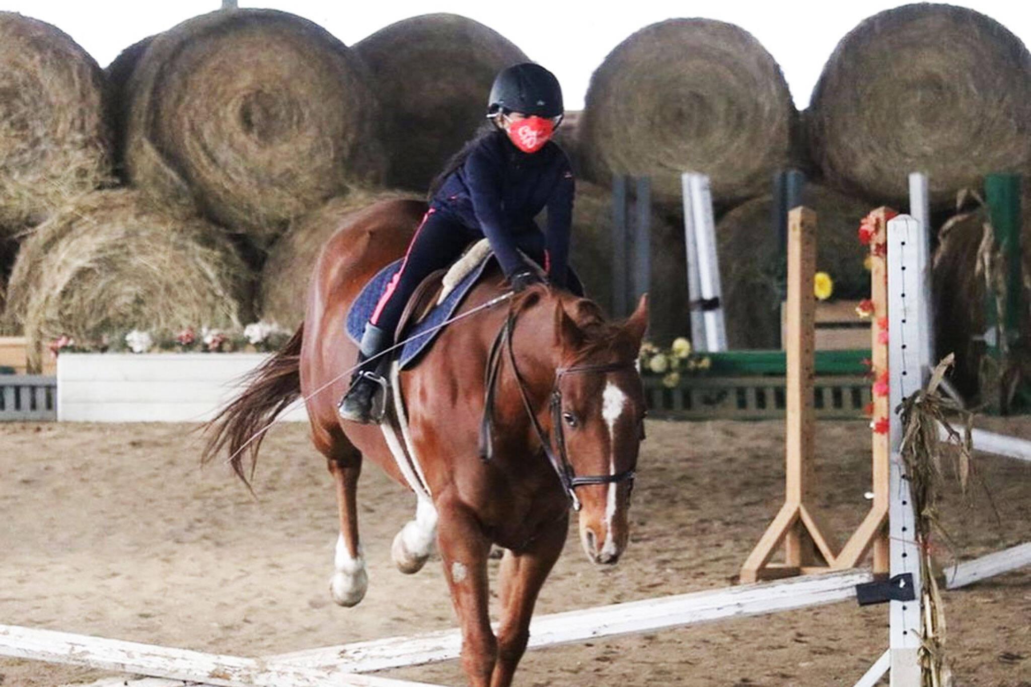 toronto equestrian