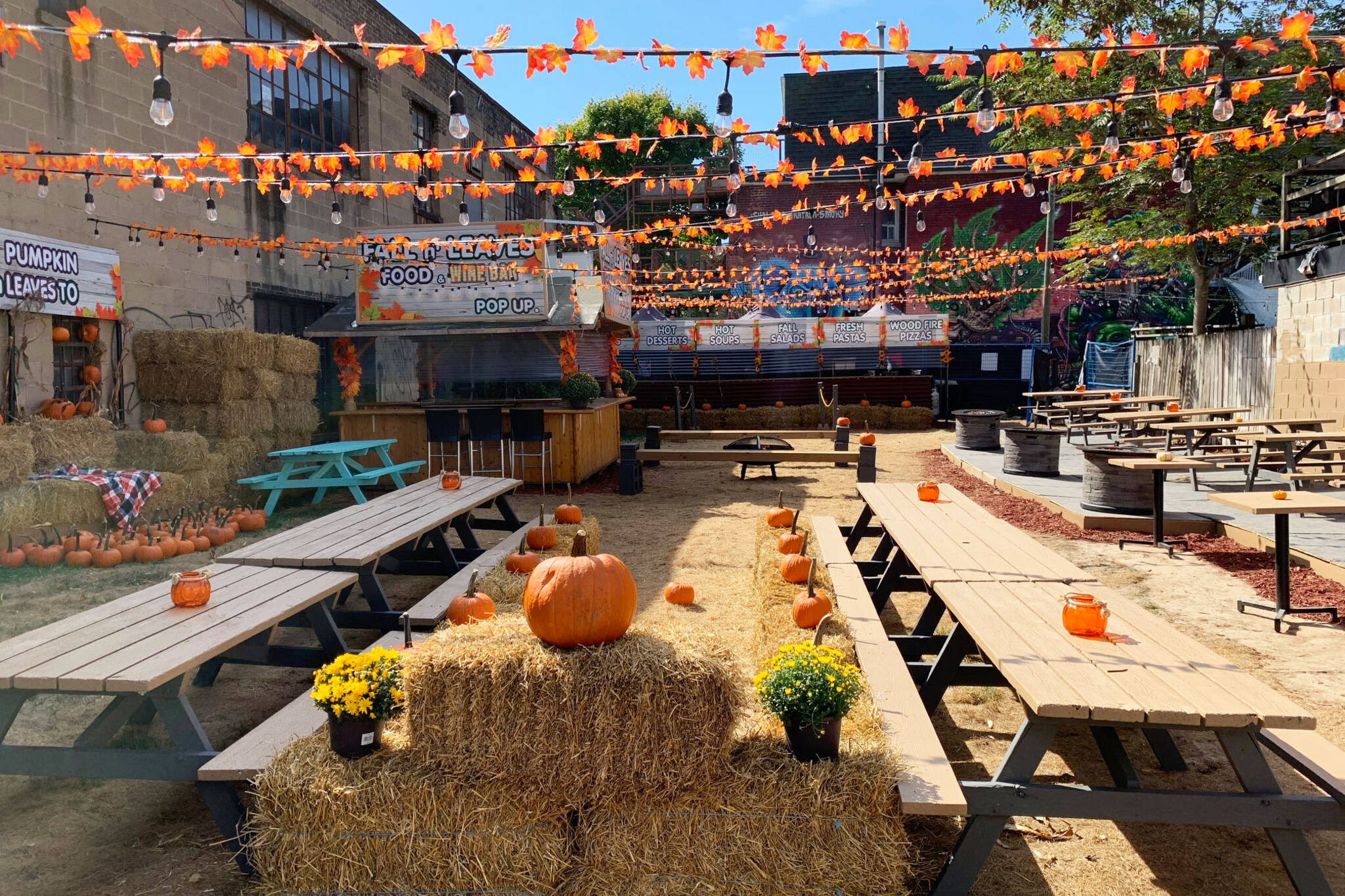 toronto pumpkin festival