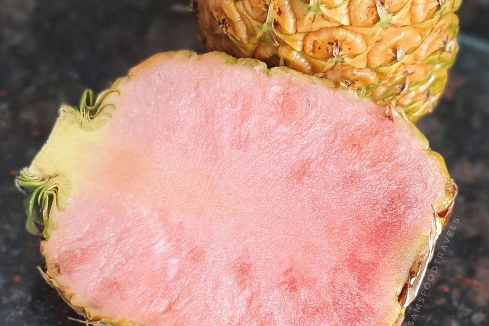 pink pineapples toronto