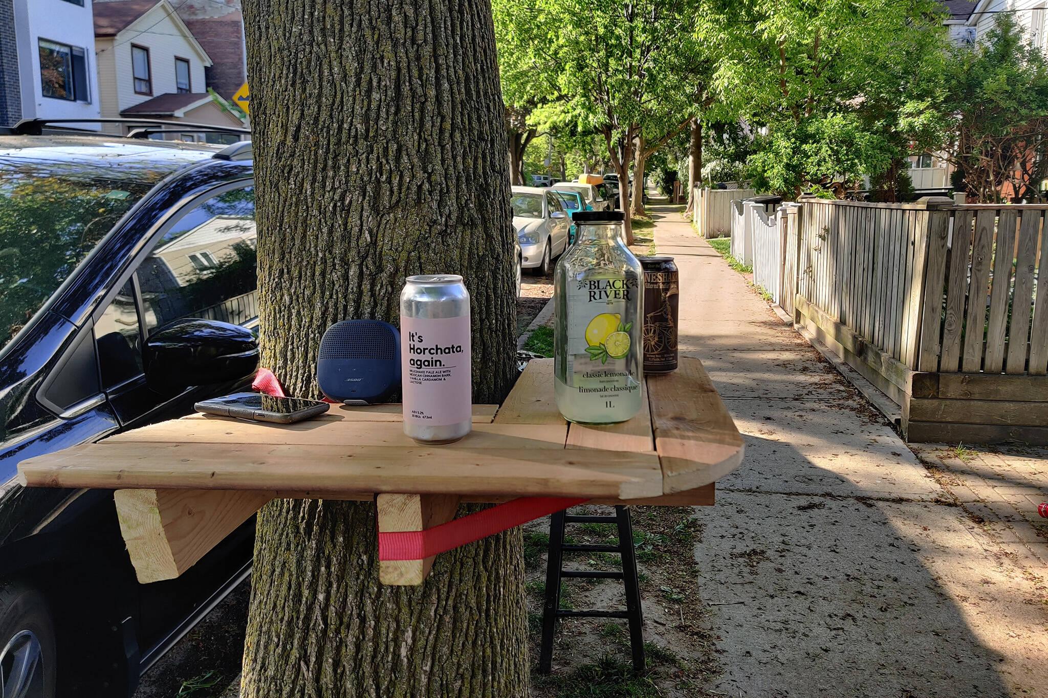 tree shelf toronto