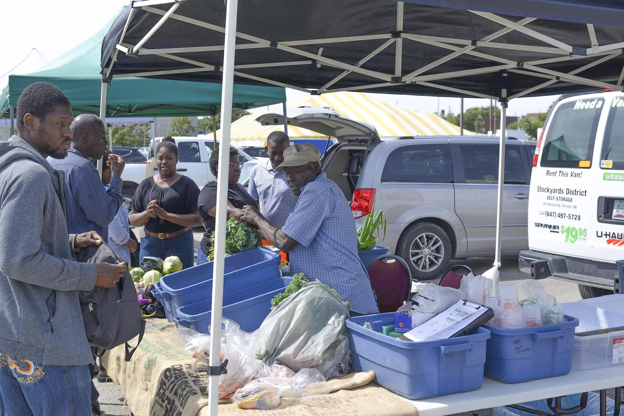 afro caribbean farmers market toronto