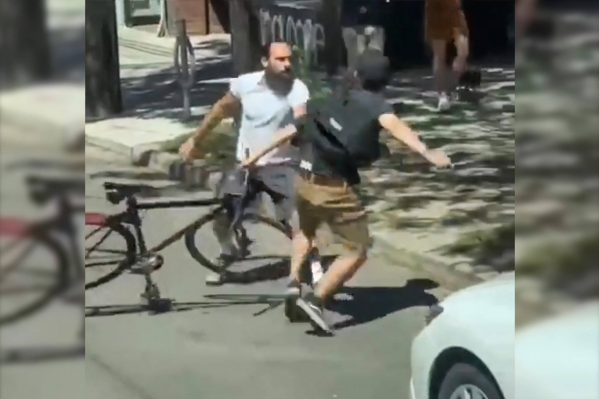 toronto fight video