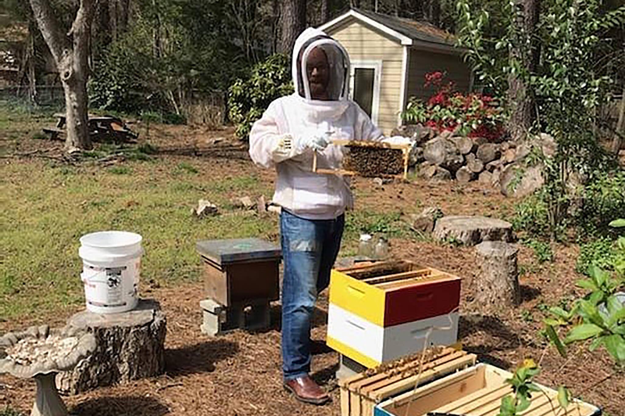 beehives toronto