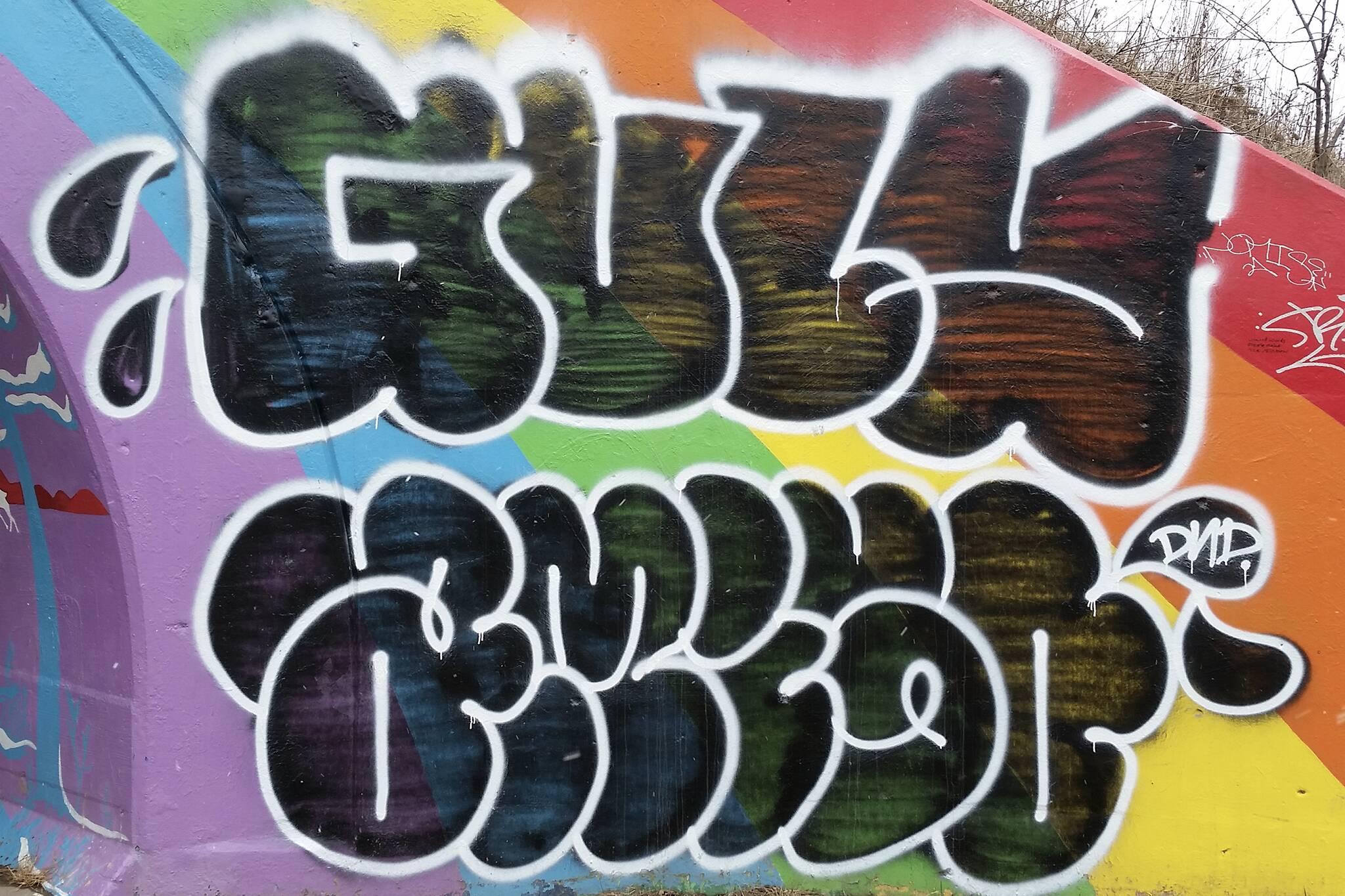 rainbow tunnel toronto