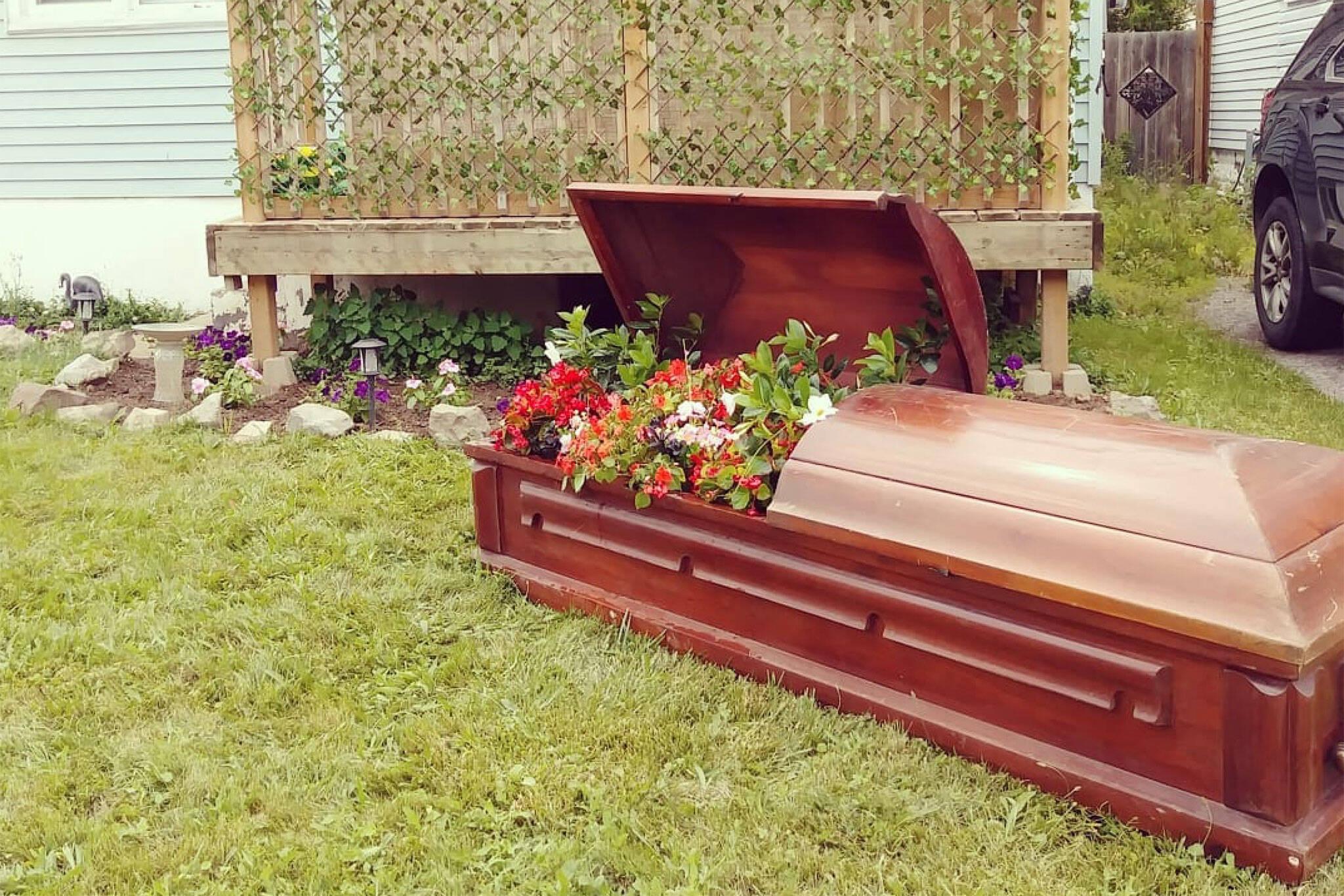 coffin flower