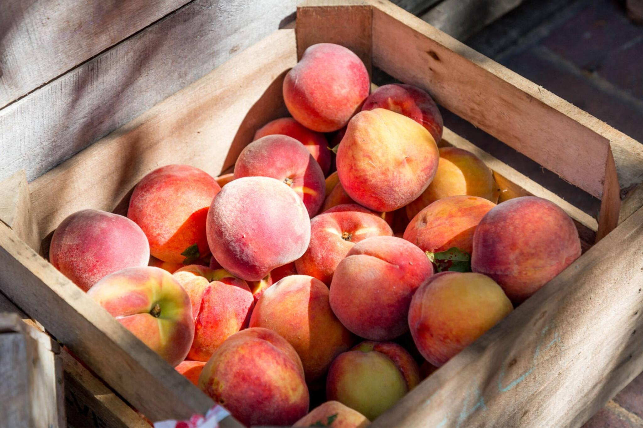 peaches ontario