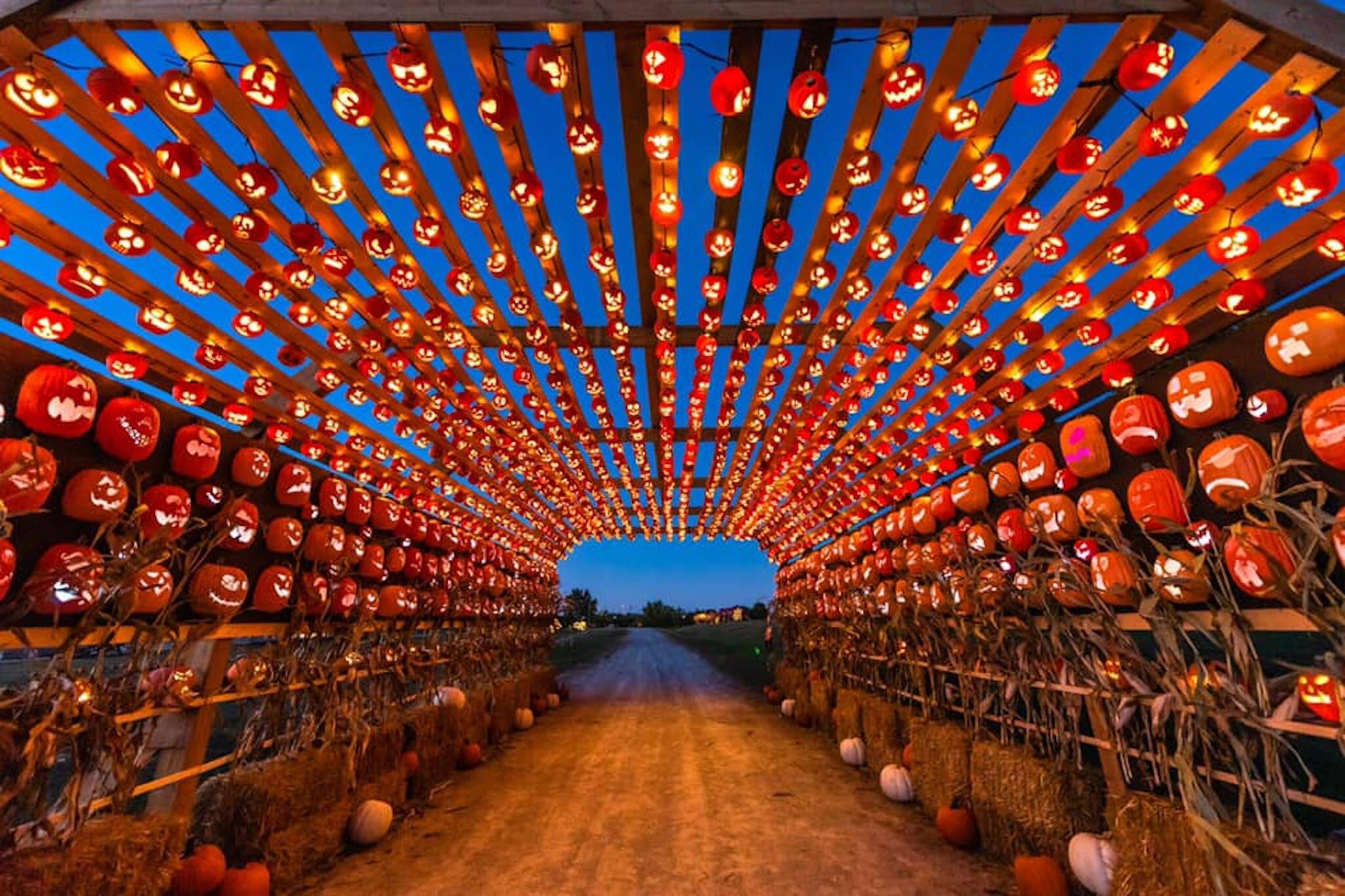 pumpkins after dark milton