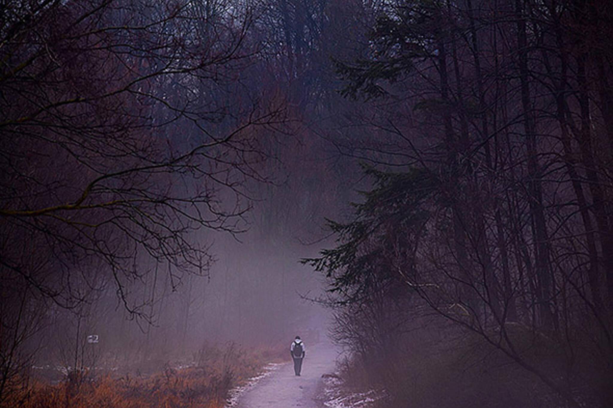 fog, park, alone