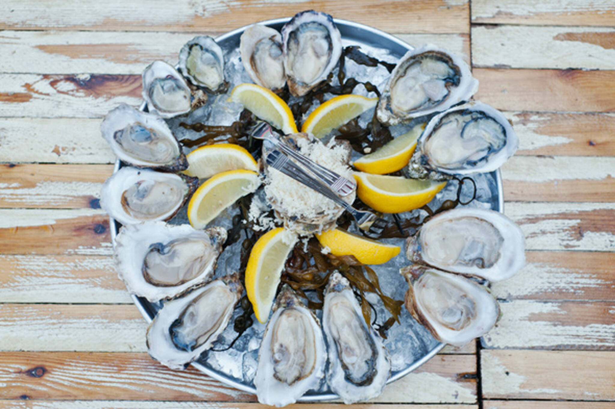 oyster bar toronto