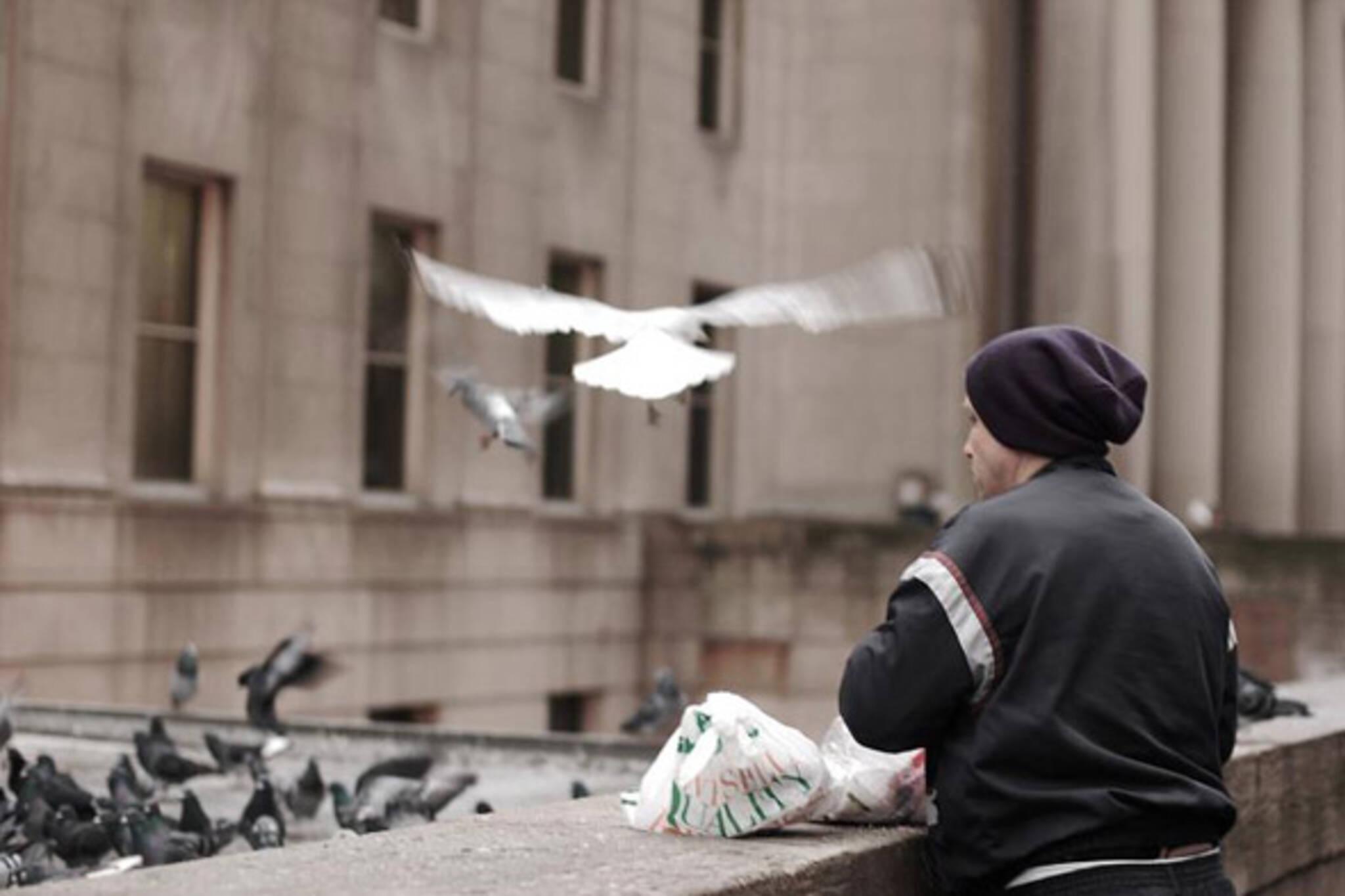 Toronto Union Station bird man