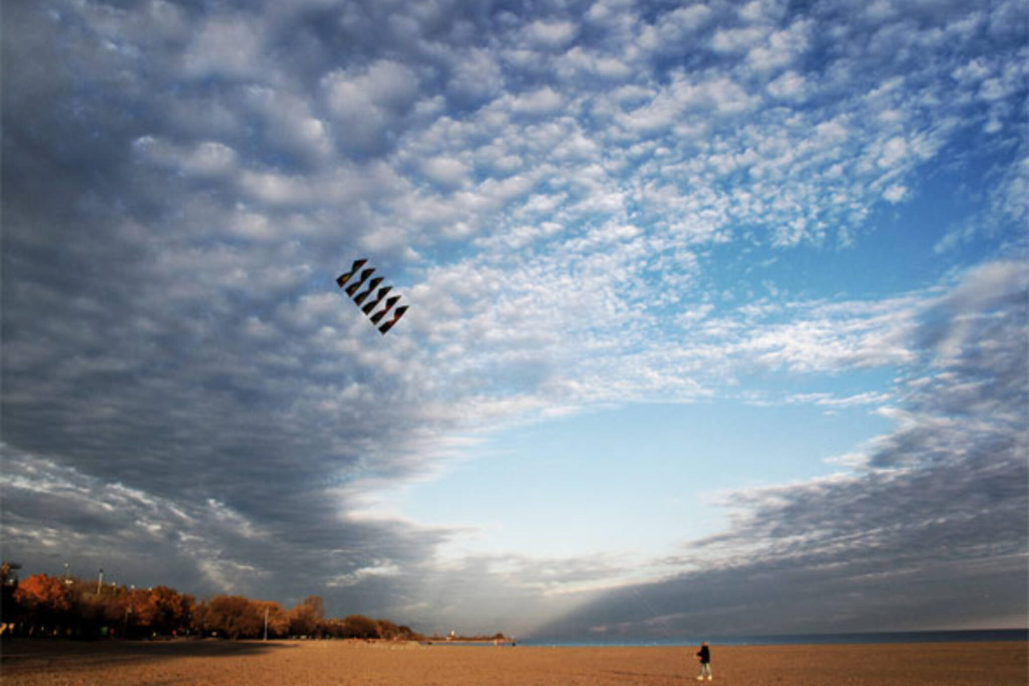 fly kite toronto