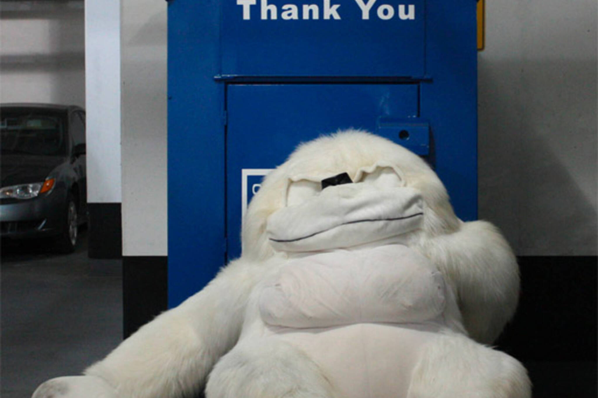 donation box gorilla