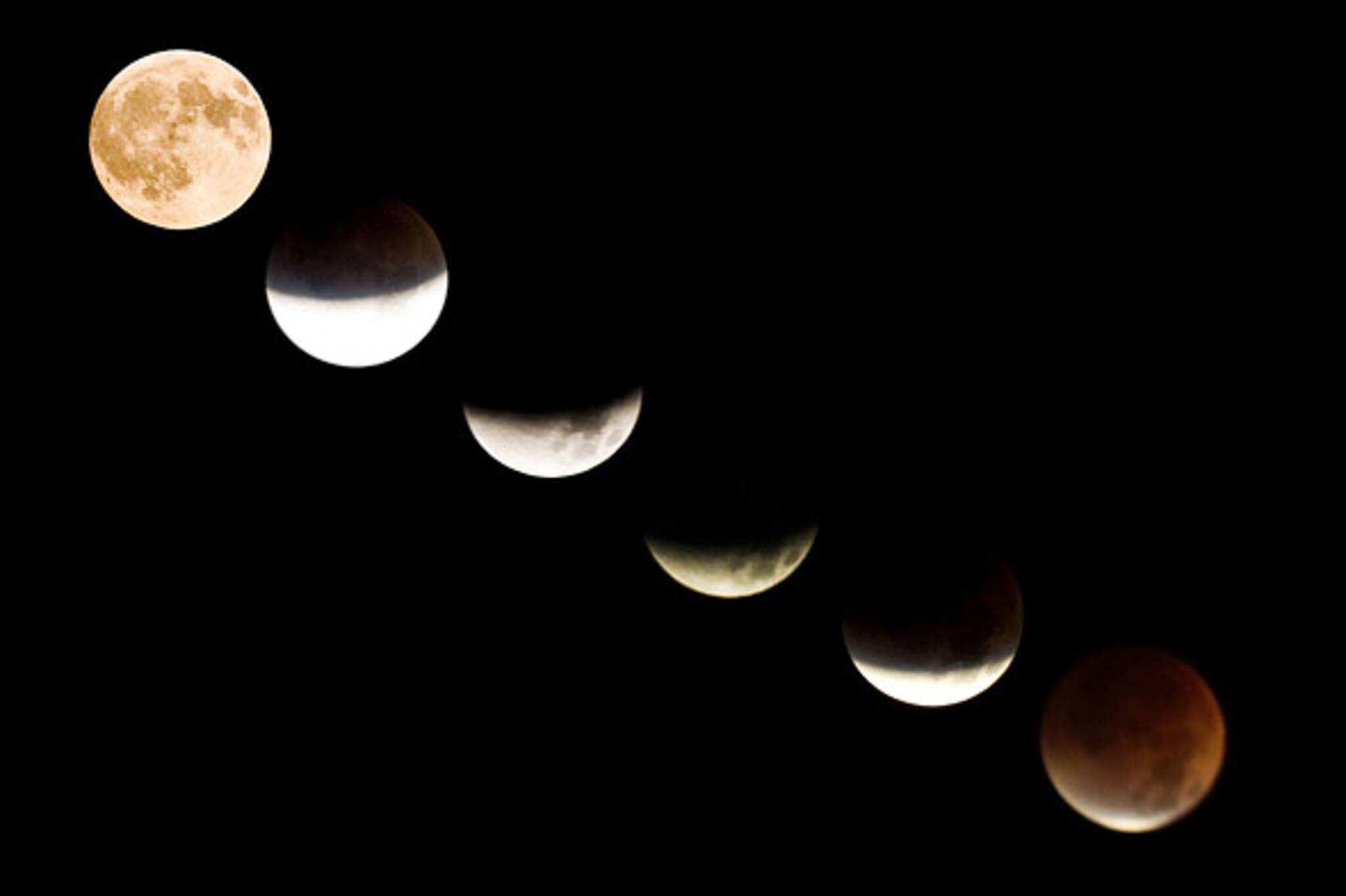 20070828_luna2.jpg