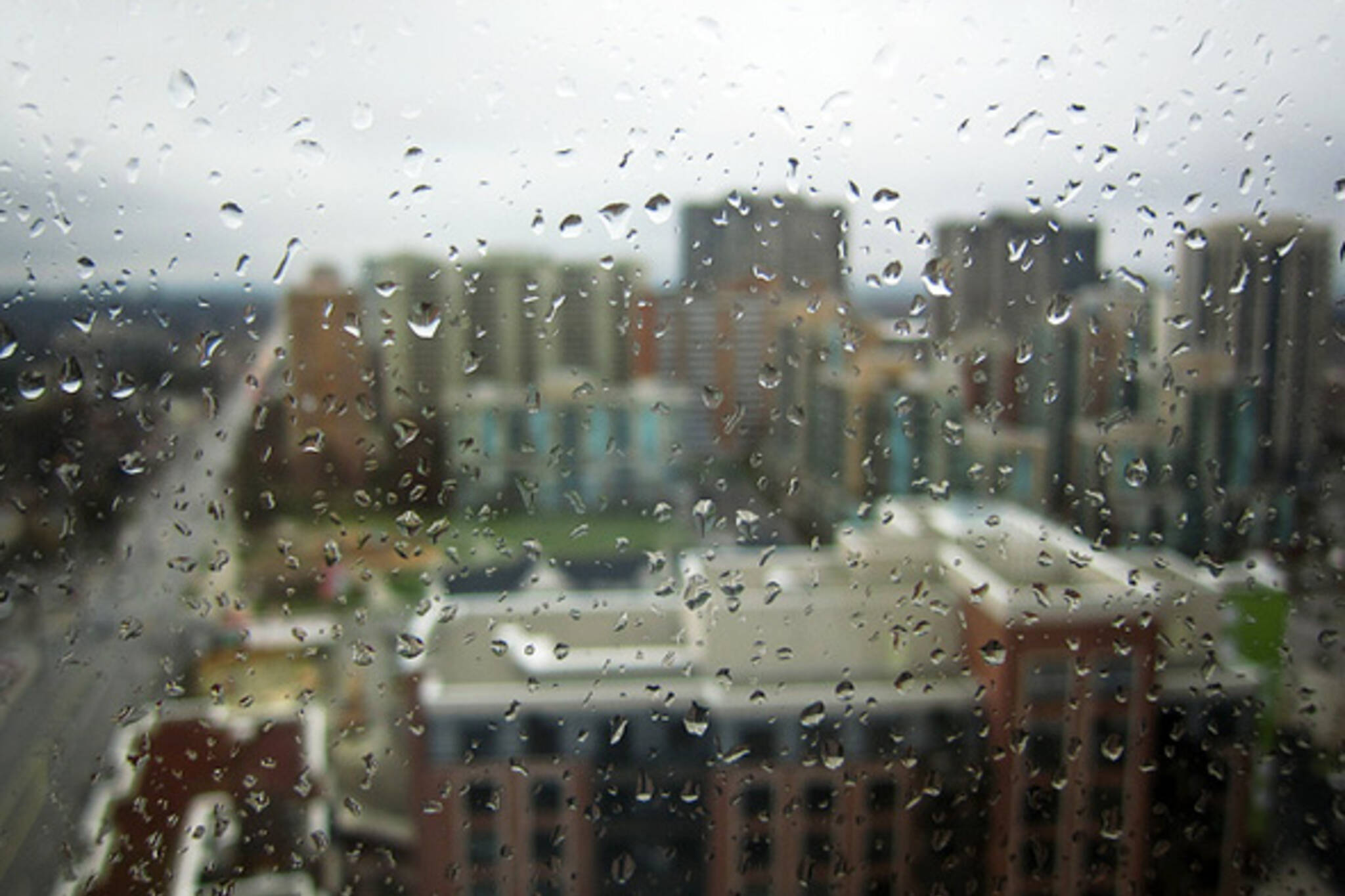 Rainy Toronto