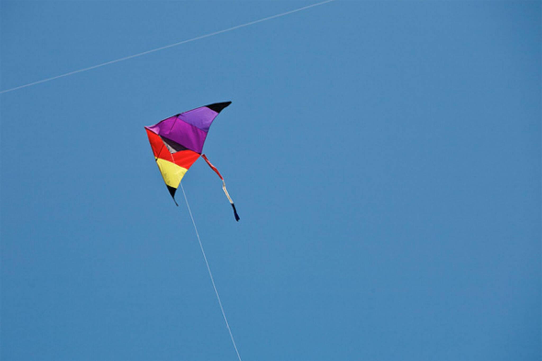 kite ban toronto park