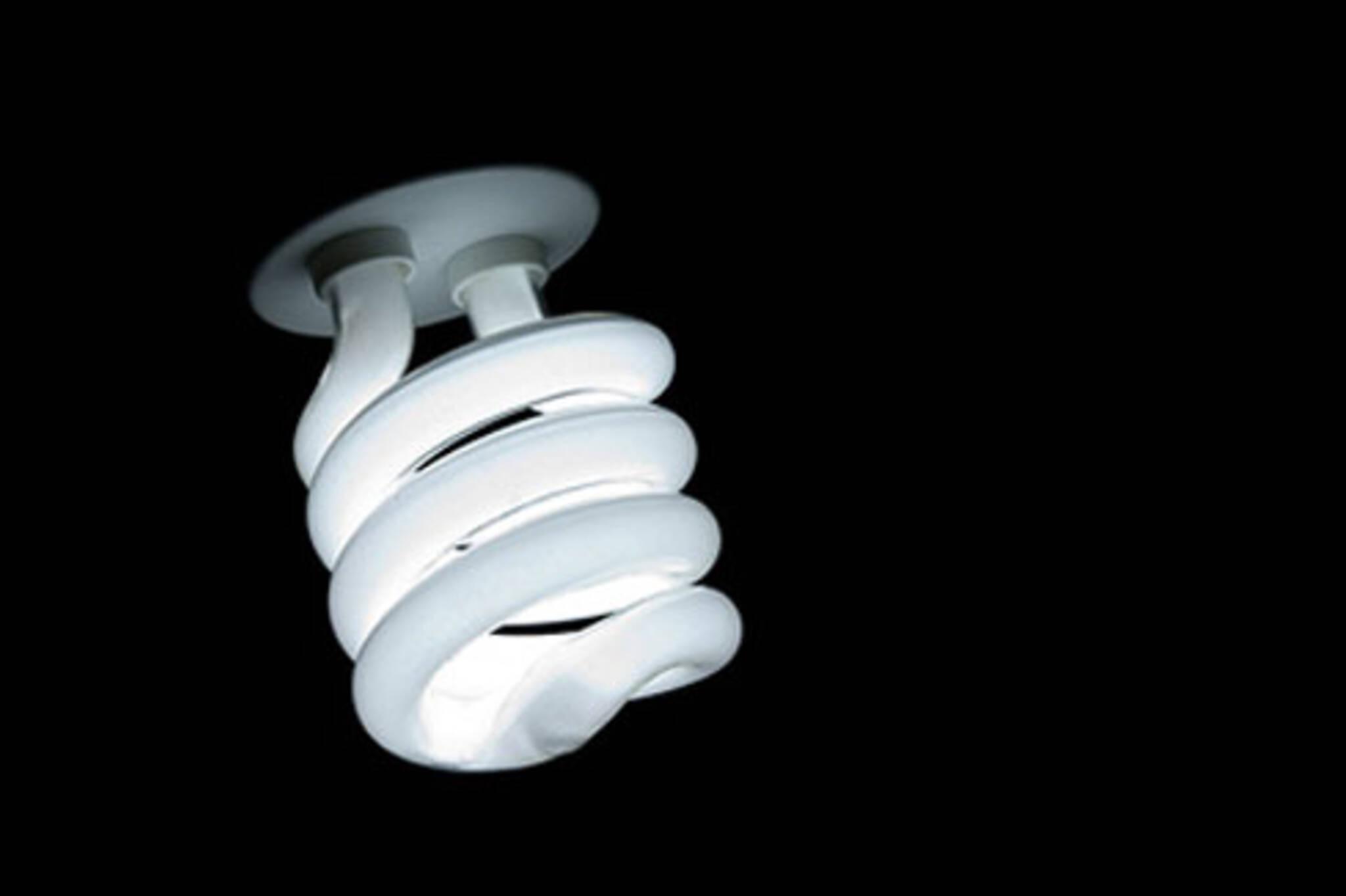 20070621_efficientlightbulb.jpg