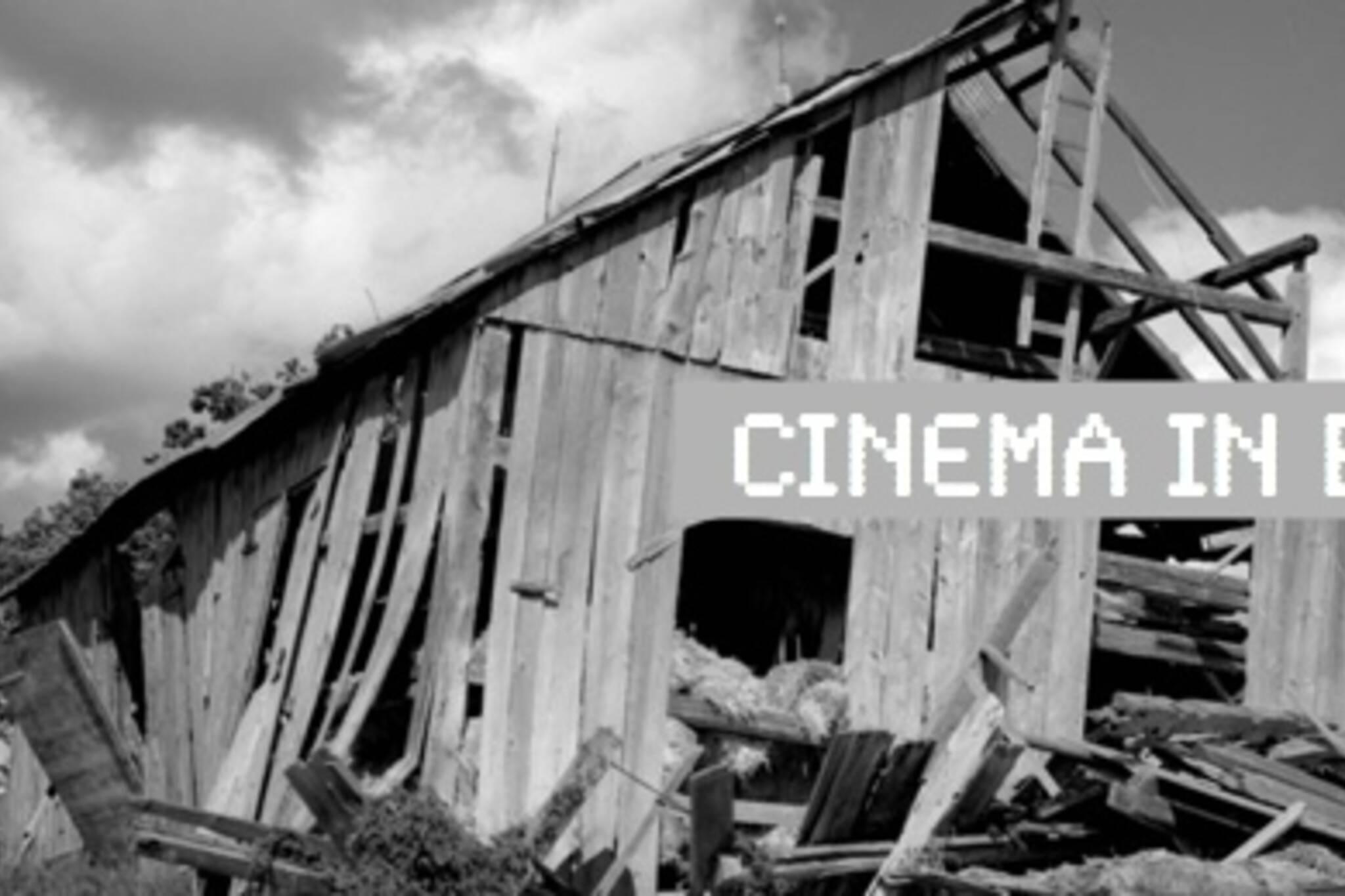 Cinema In Brief