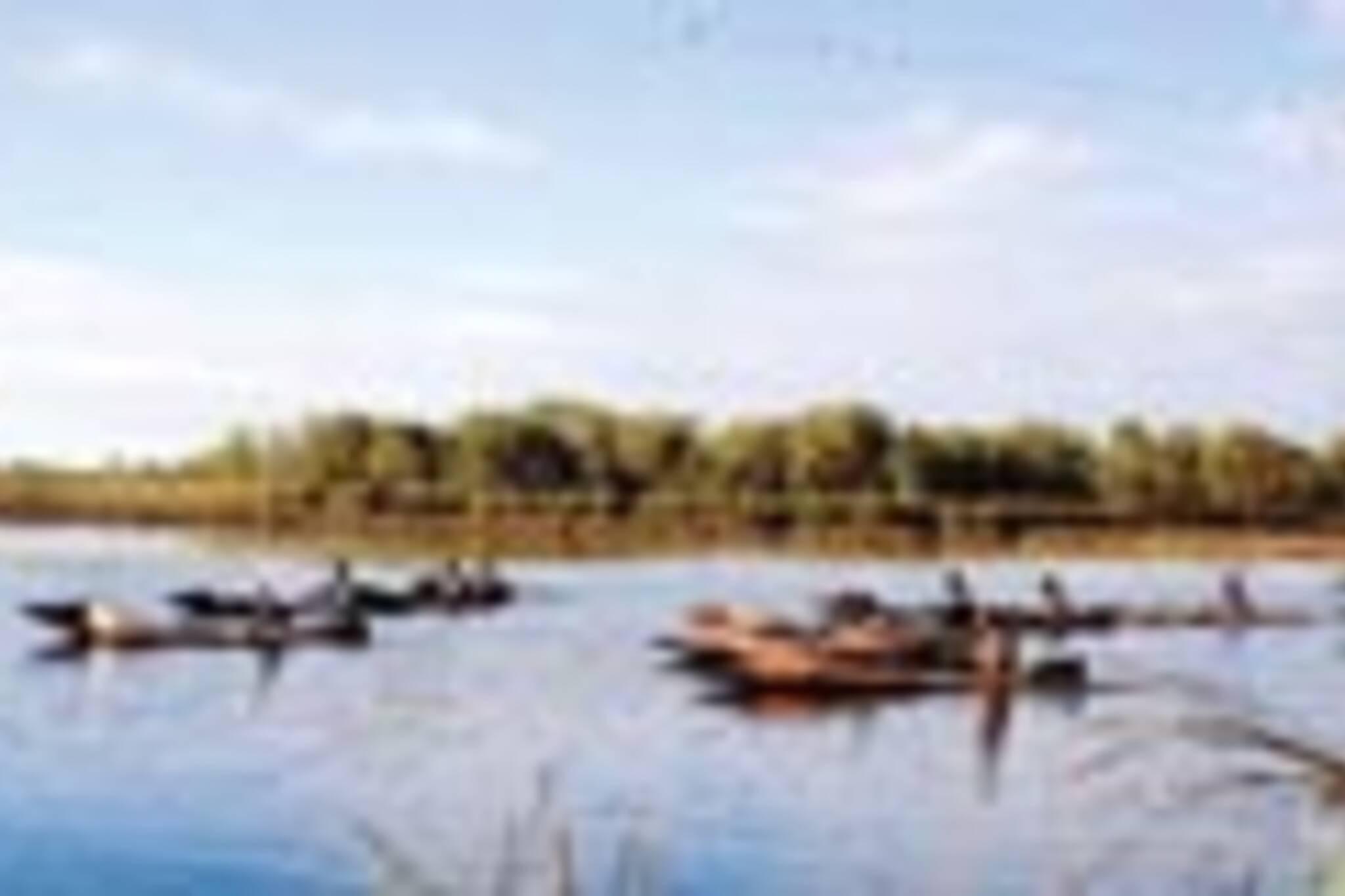 20060911_canoes.jpg