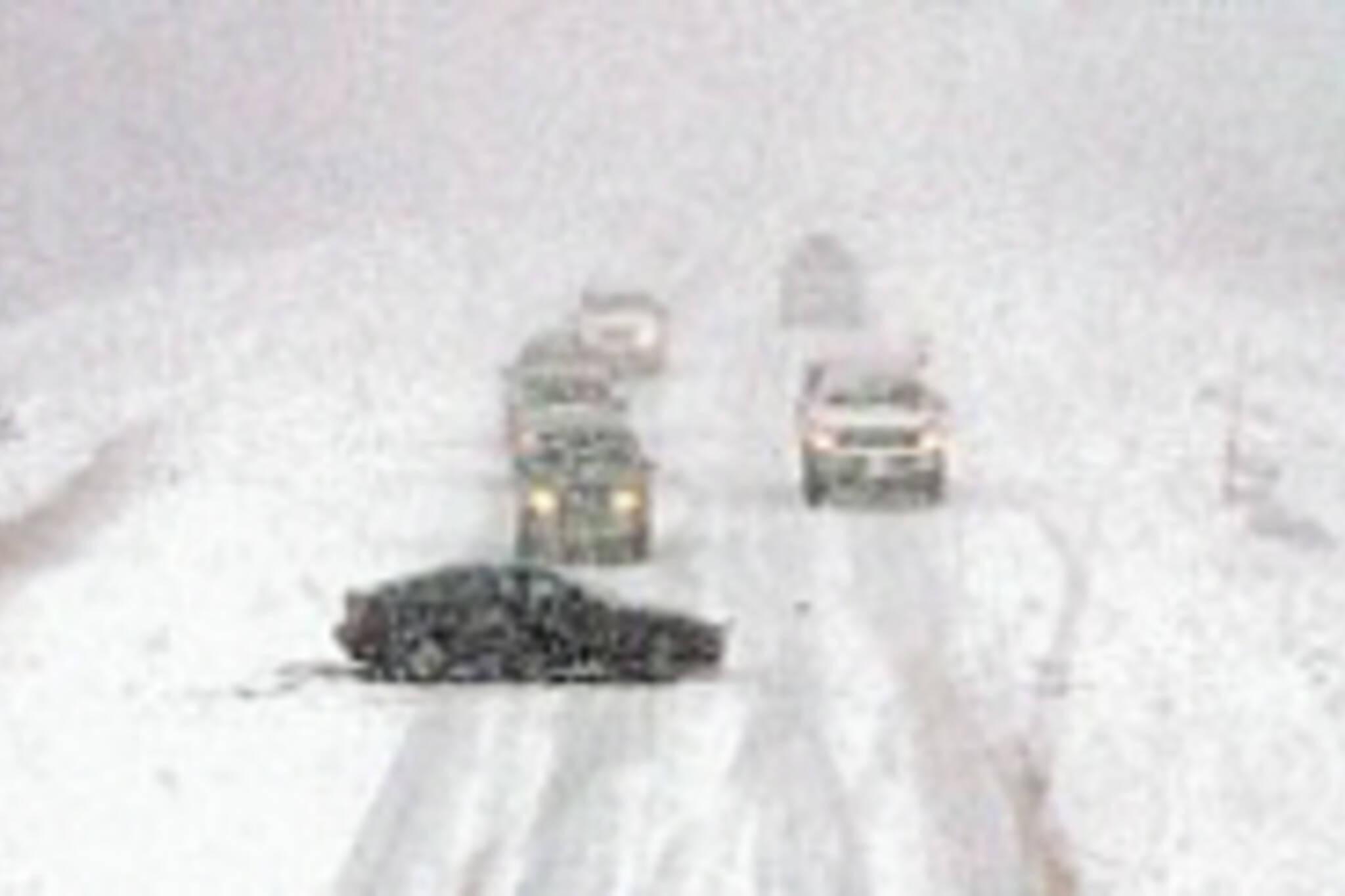 nov24blog_winter.jpg