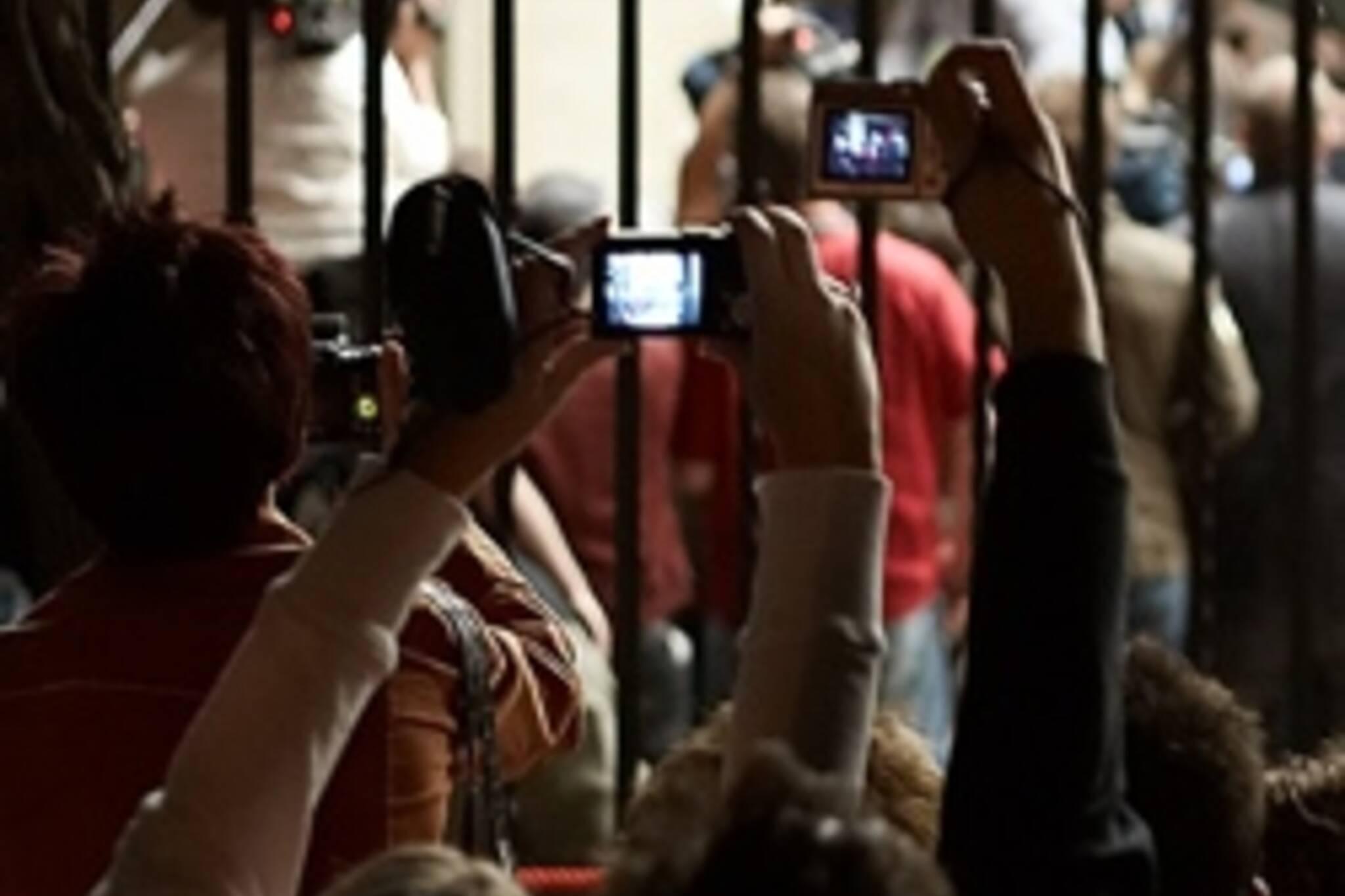 Crowds at TIFF 2006