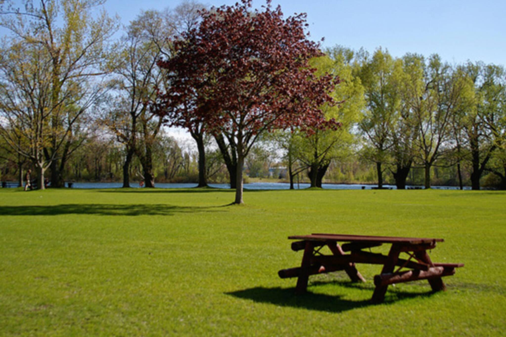 picnic toronto