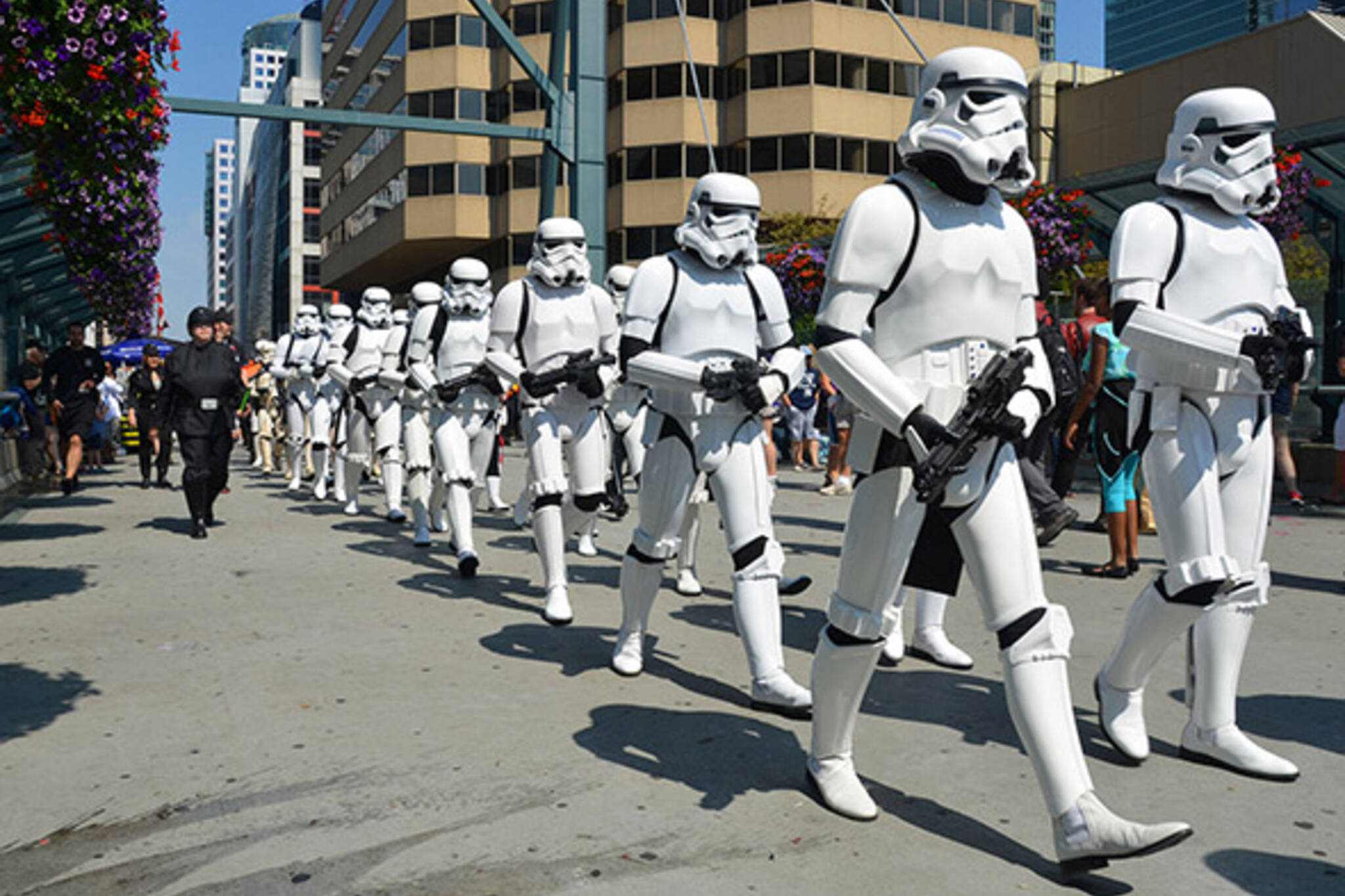 Storm troopers toronto