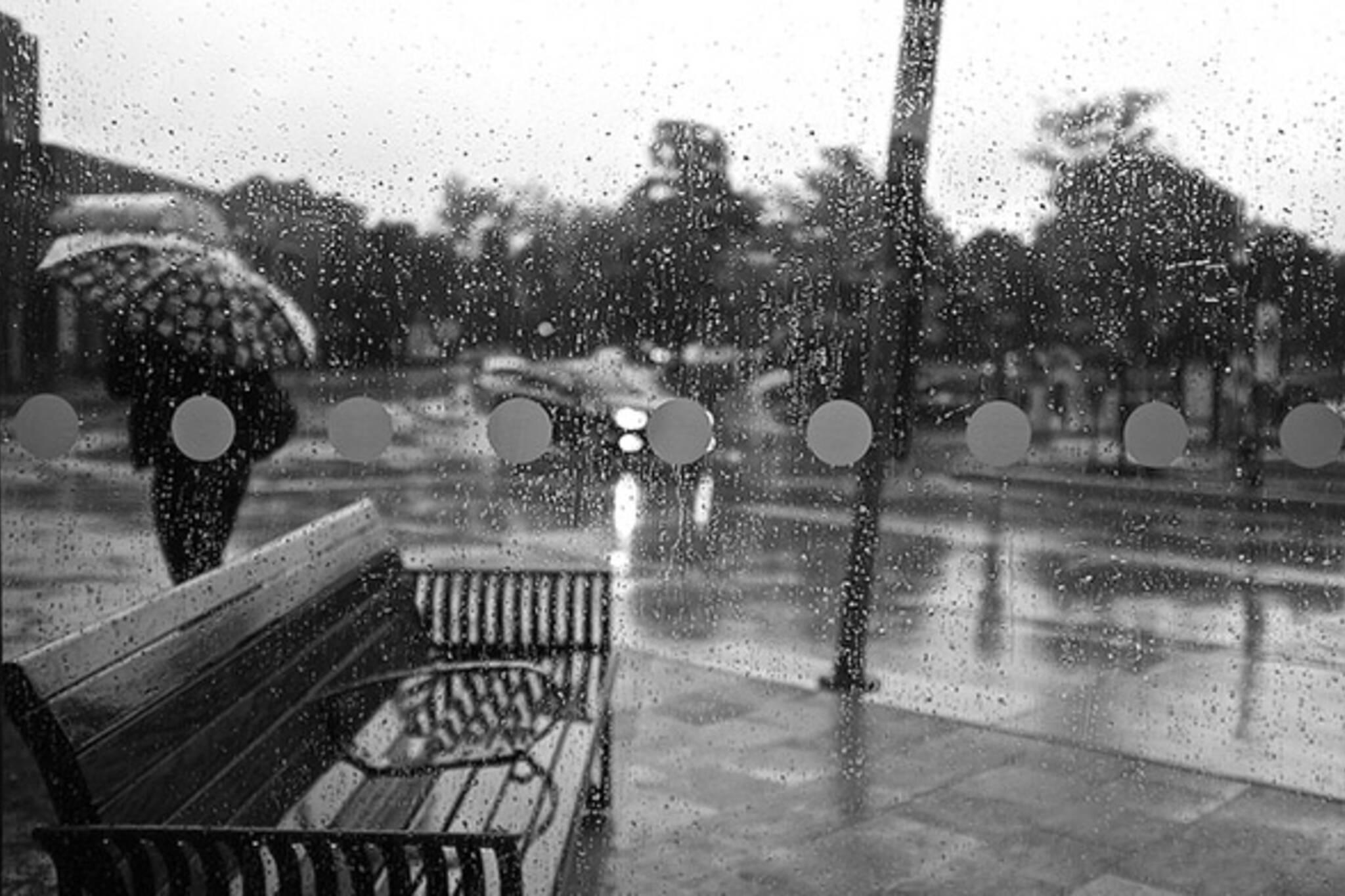 rain, fall, station