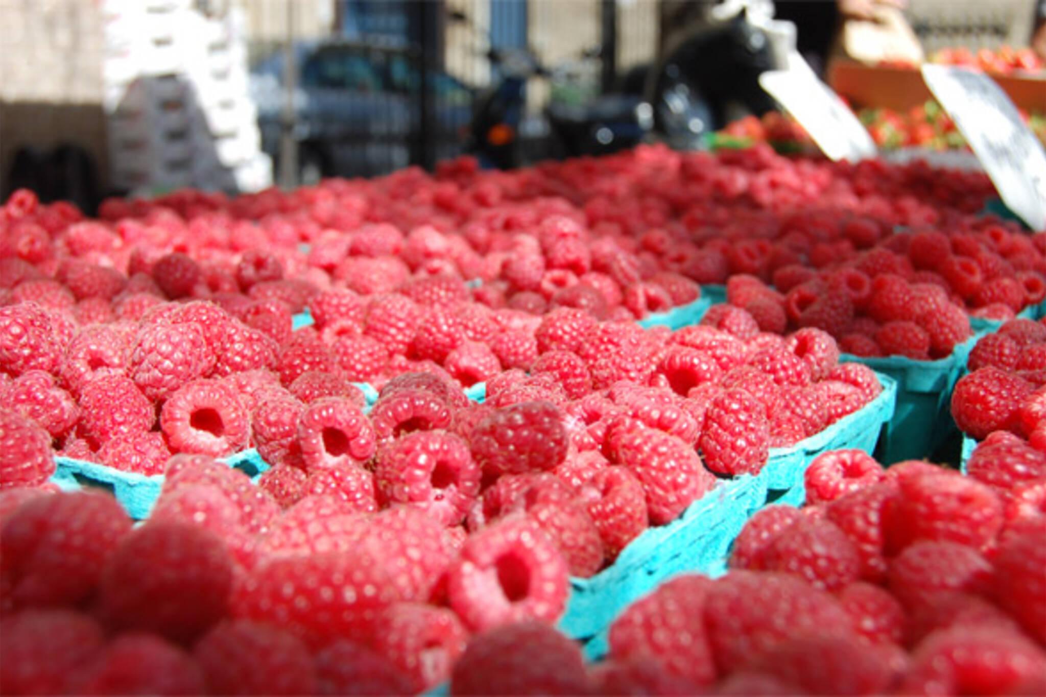raspberries ontario