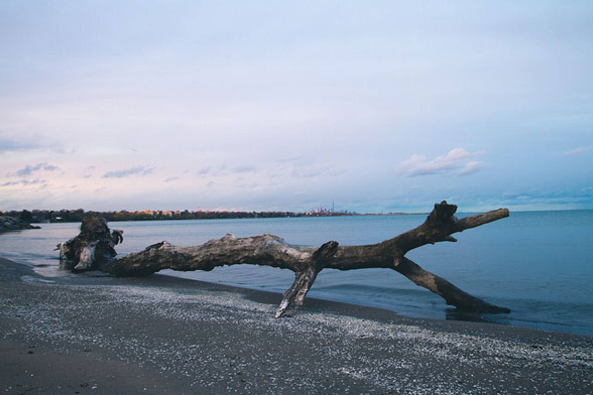 toronto beach log skyline dusk