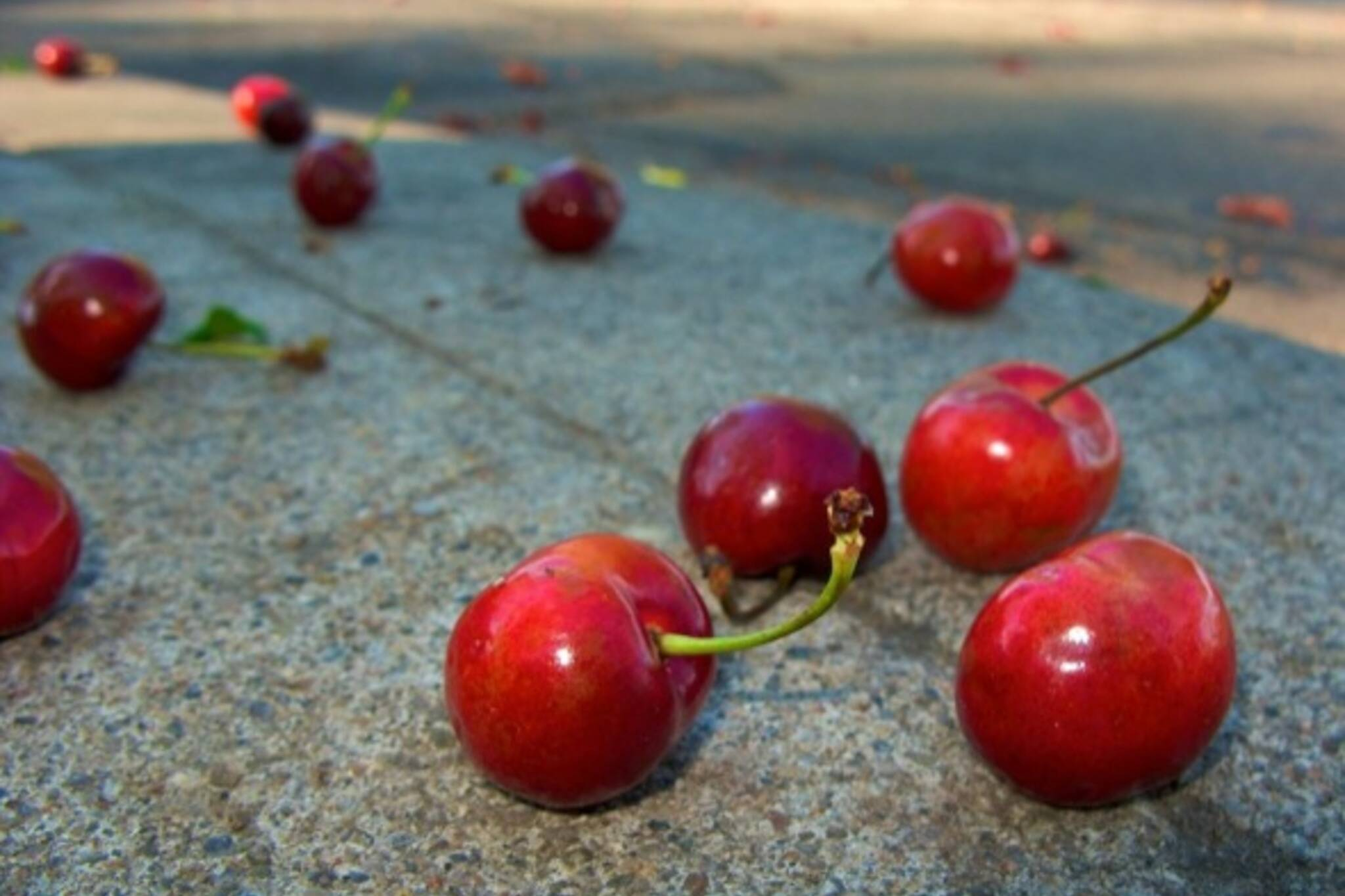 Spilled Cherries