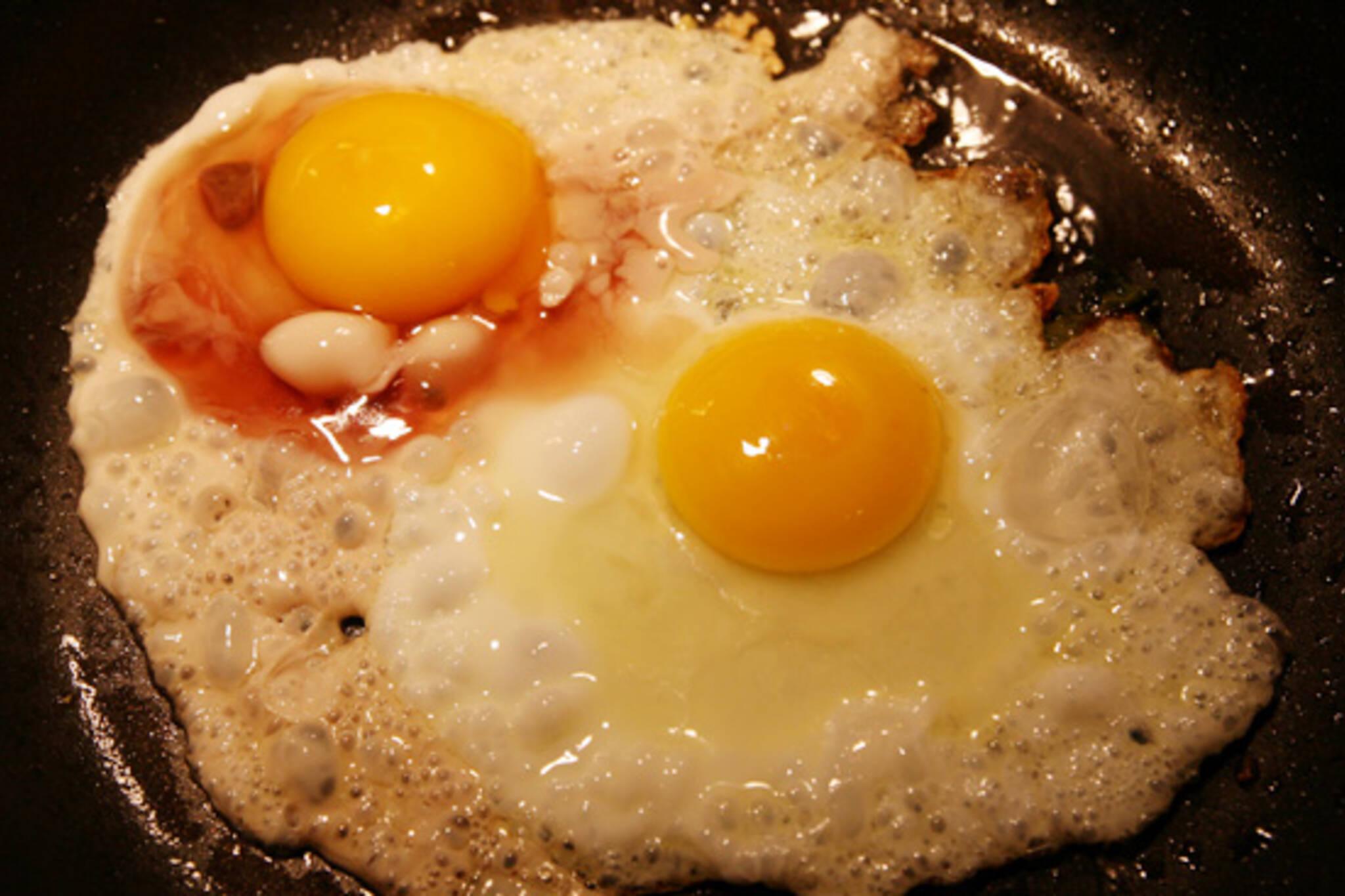 Bloody Eggs