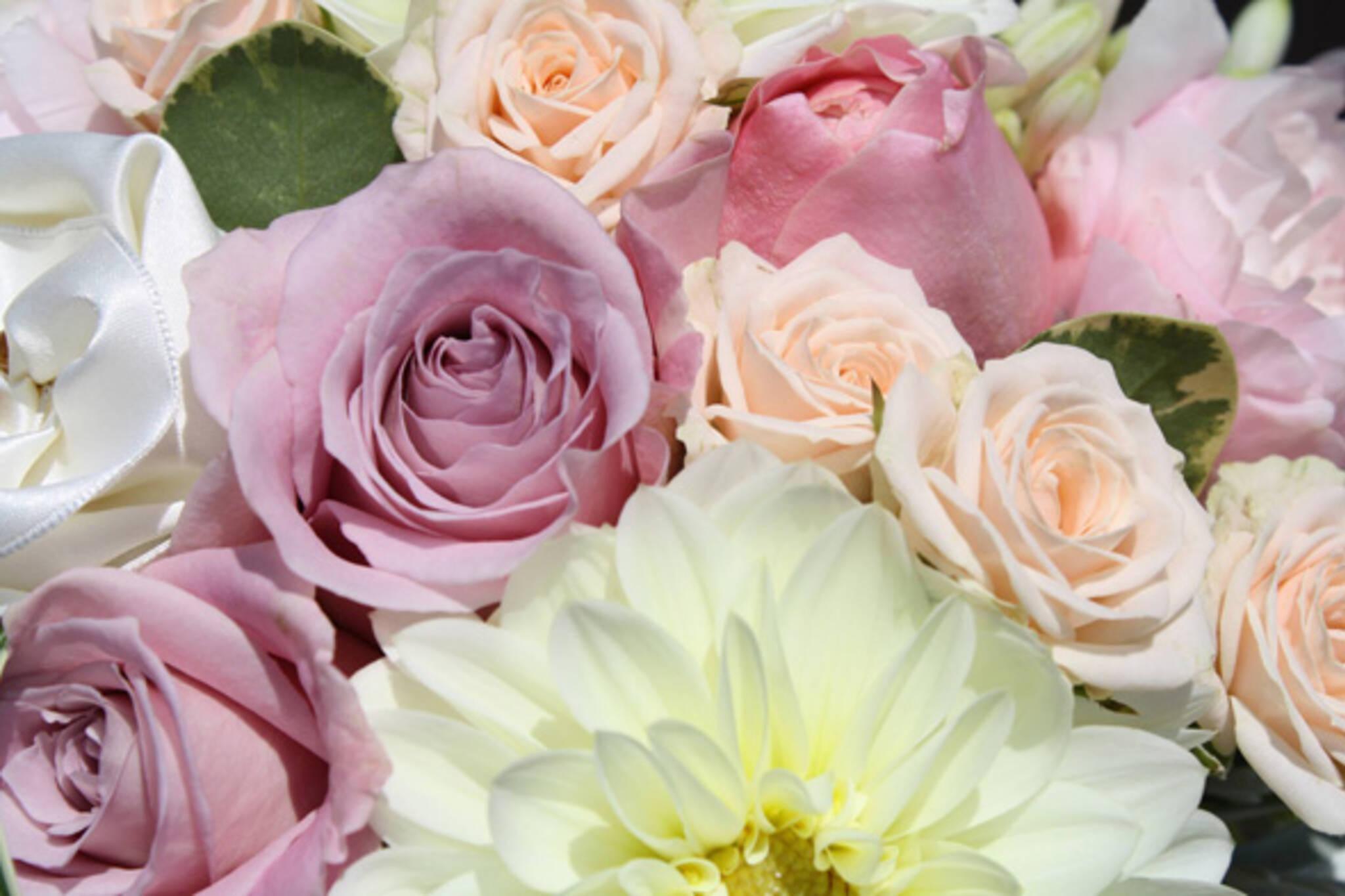 florists toronto path