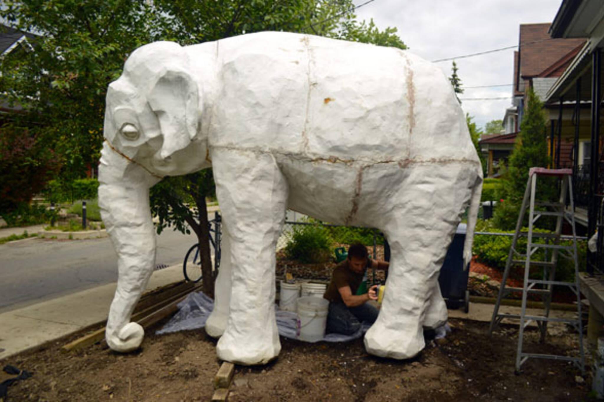 toronto white elephant