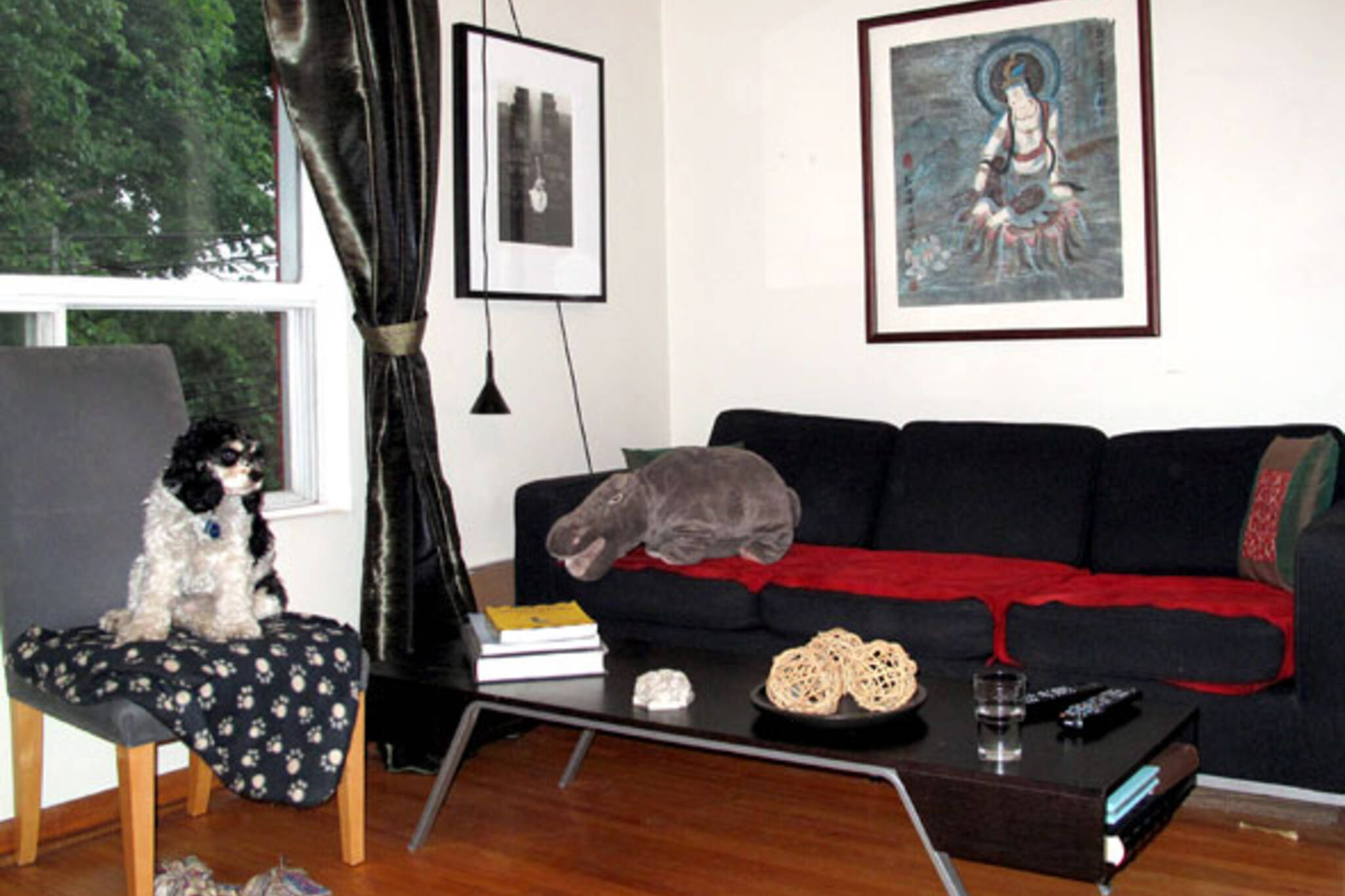 Living room hippo