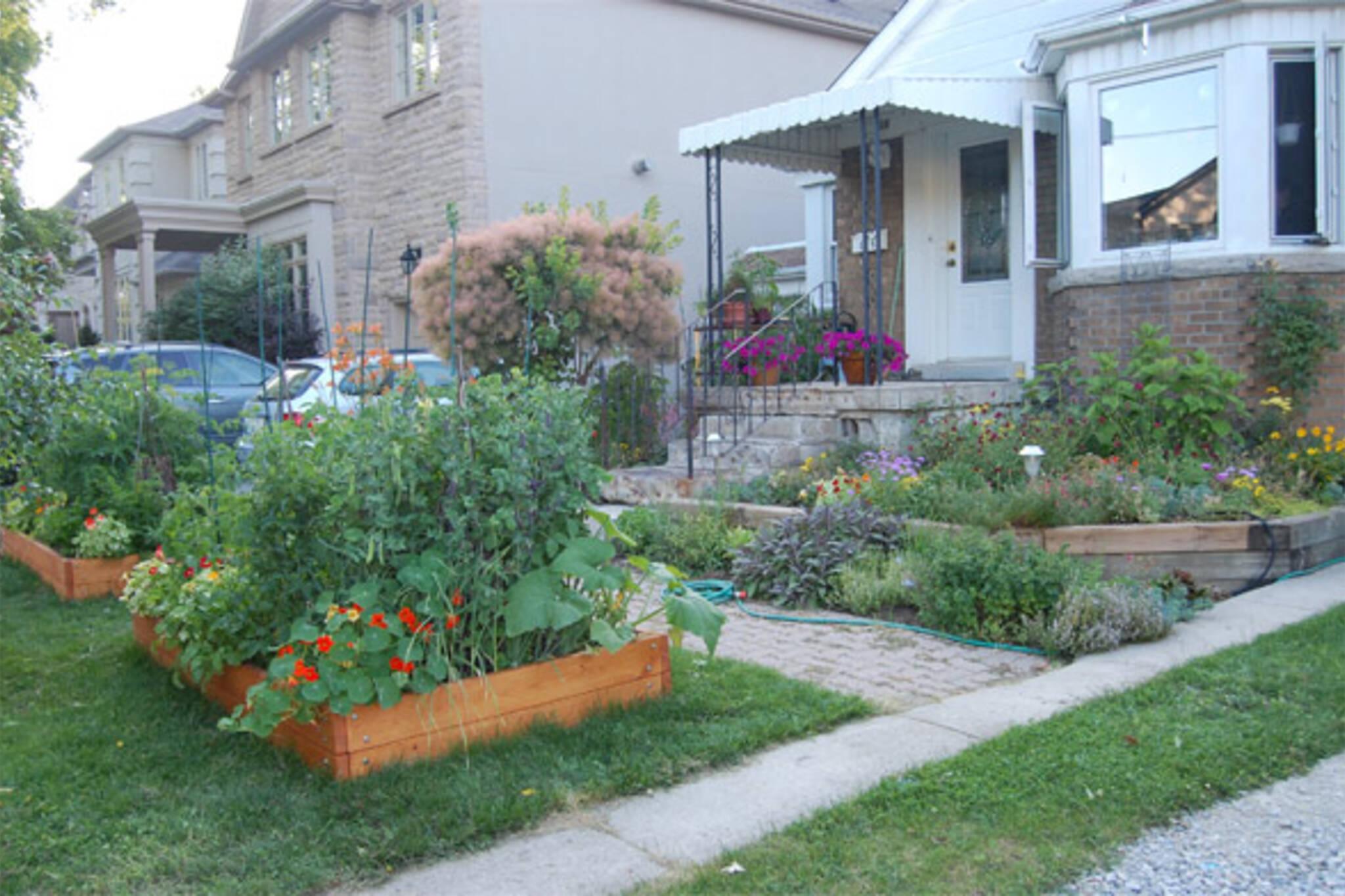 toronto urban gardening