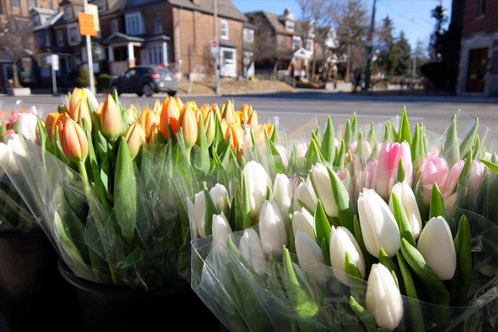 Easter Sunday Toronto