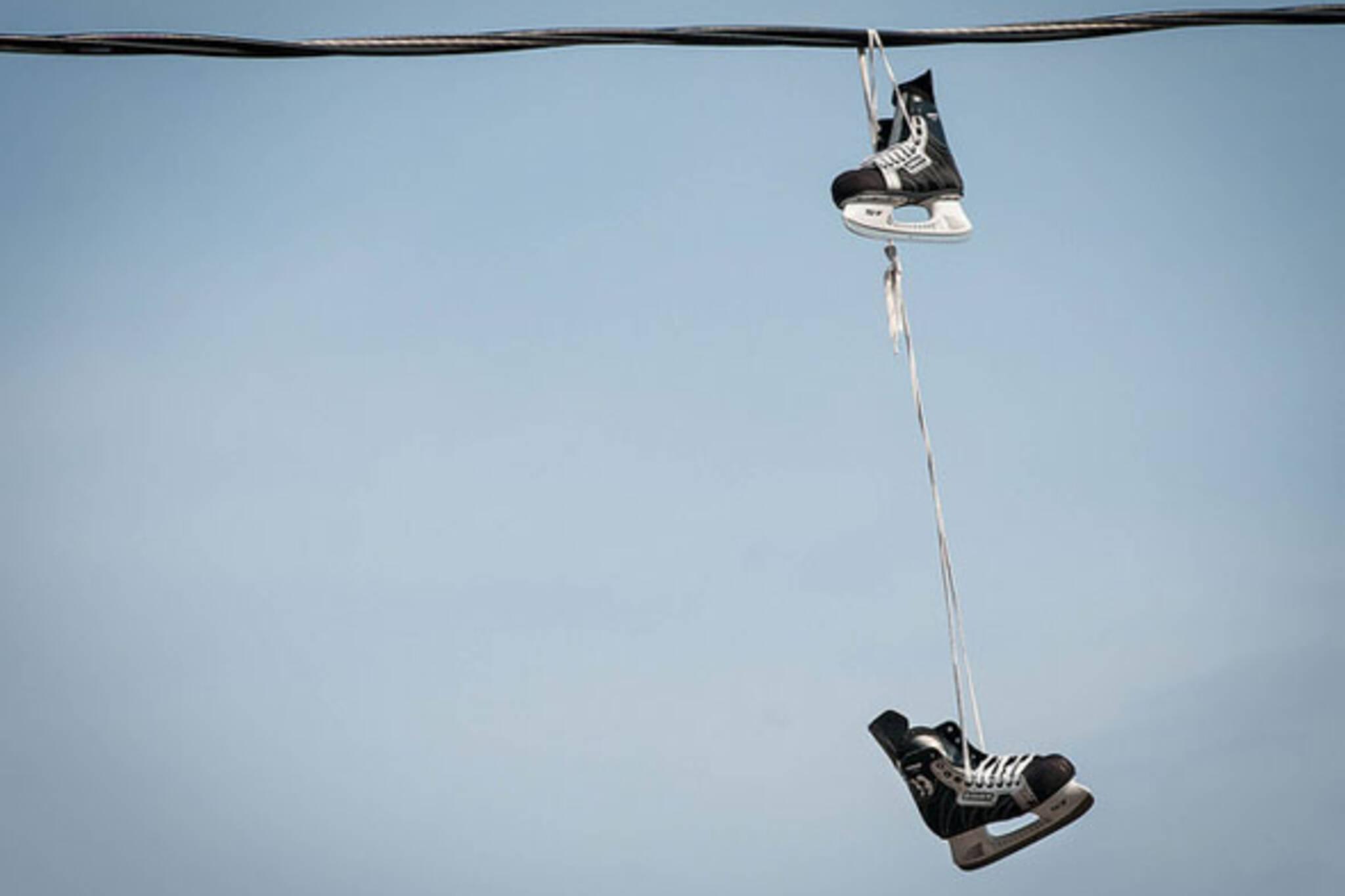 toronto ice skates