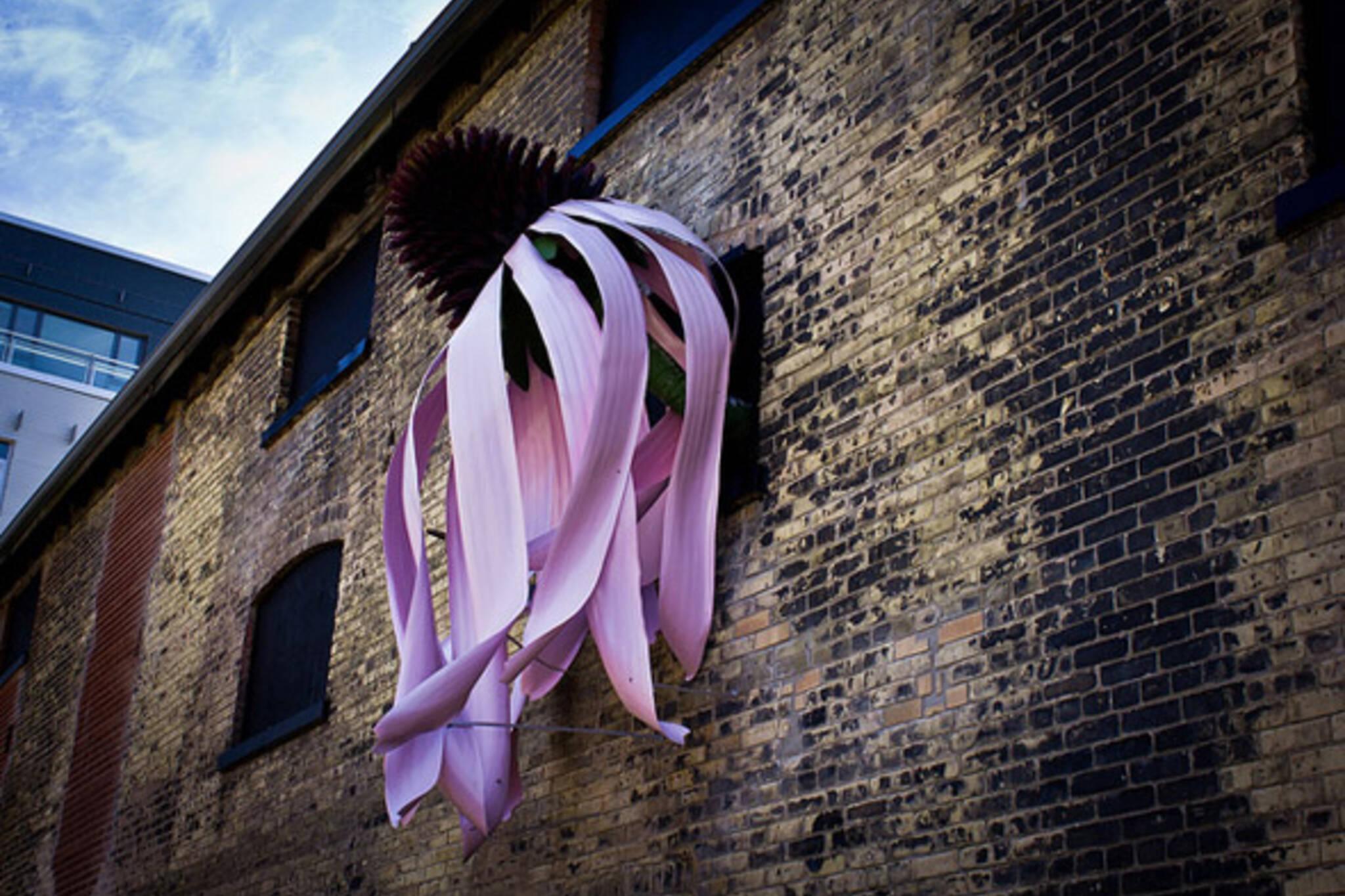 Toronto flower art installation
