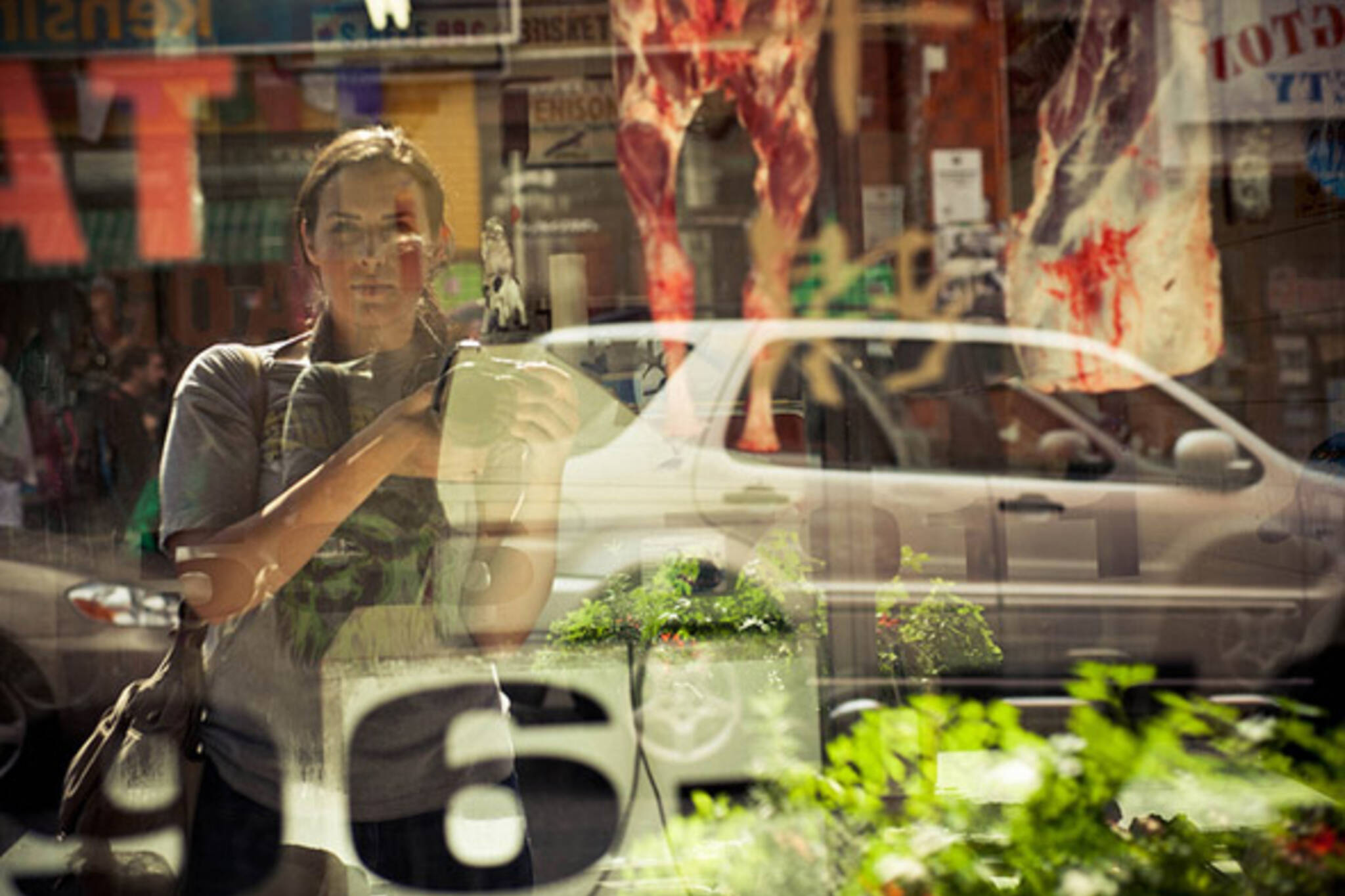 photographer, Toronto, sara, collaton
