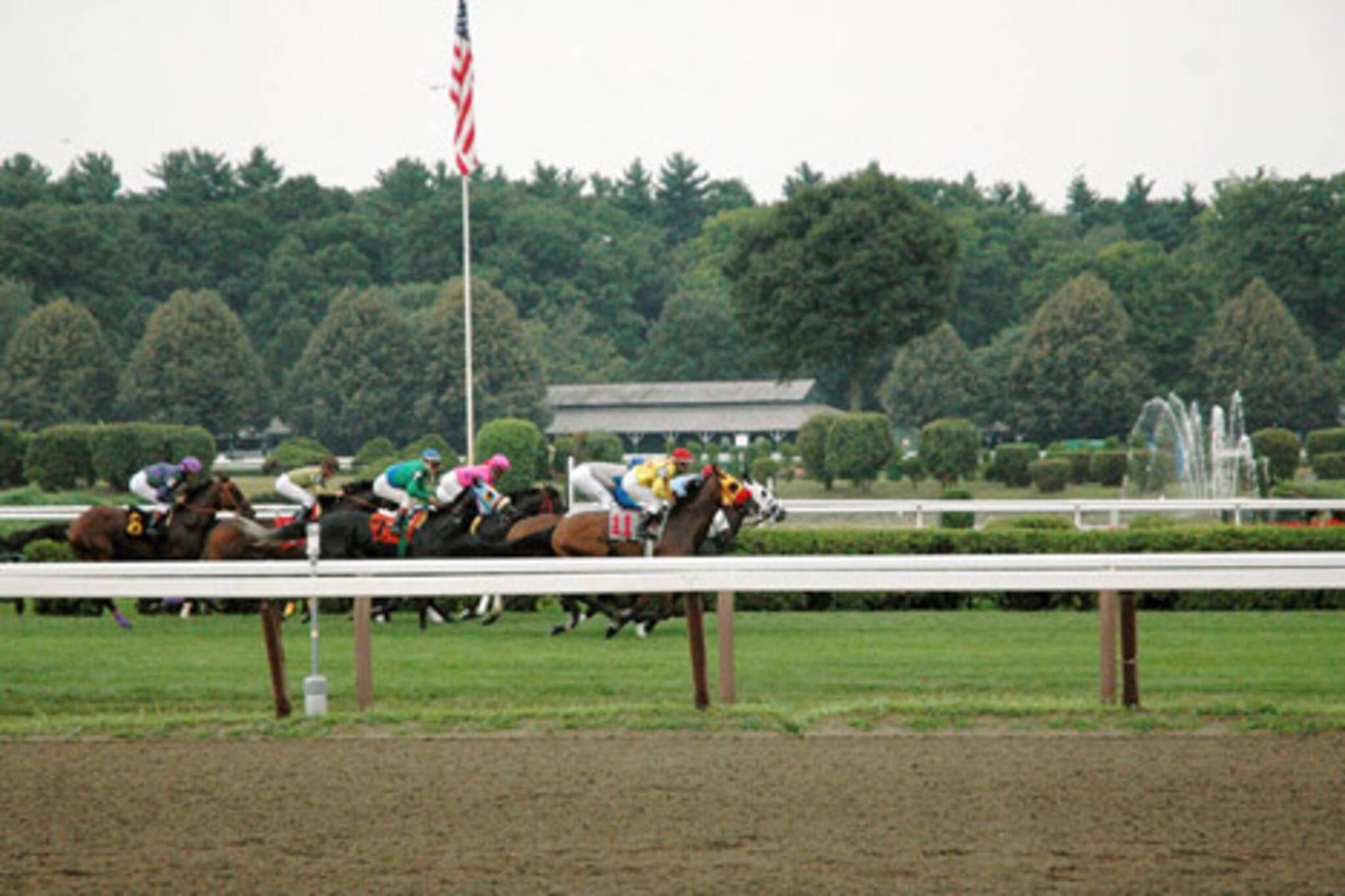 20070210_horserace.jpg
