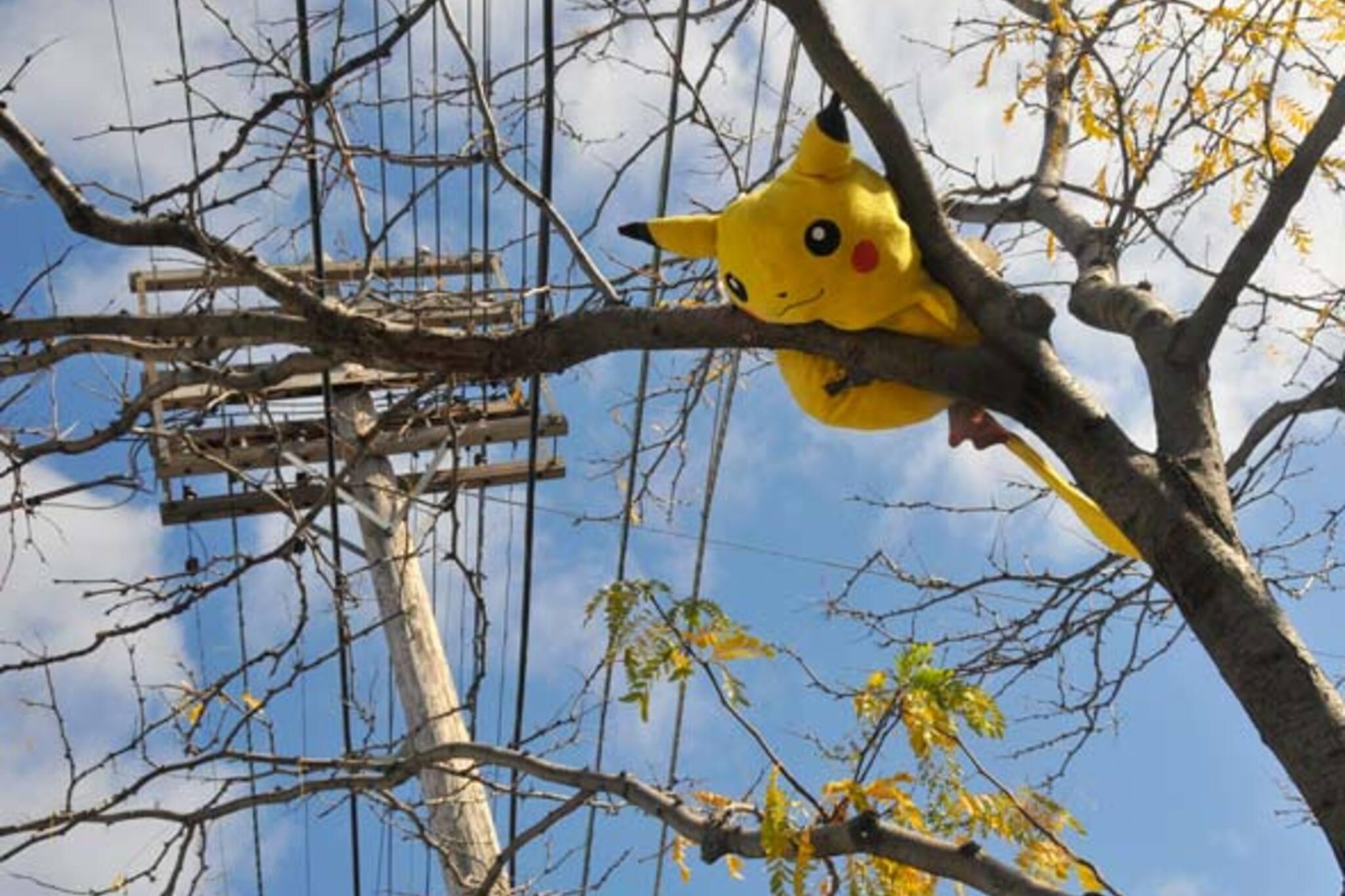 animals in trees ossington