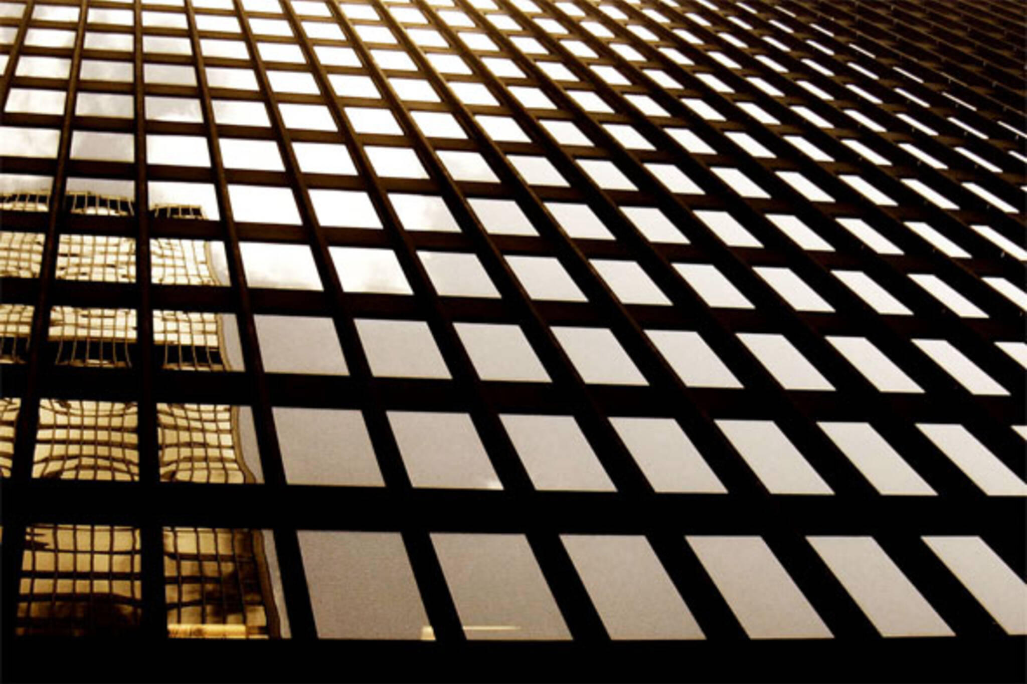building reflection grid