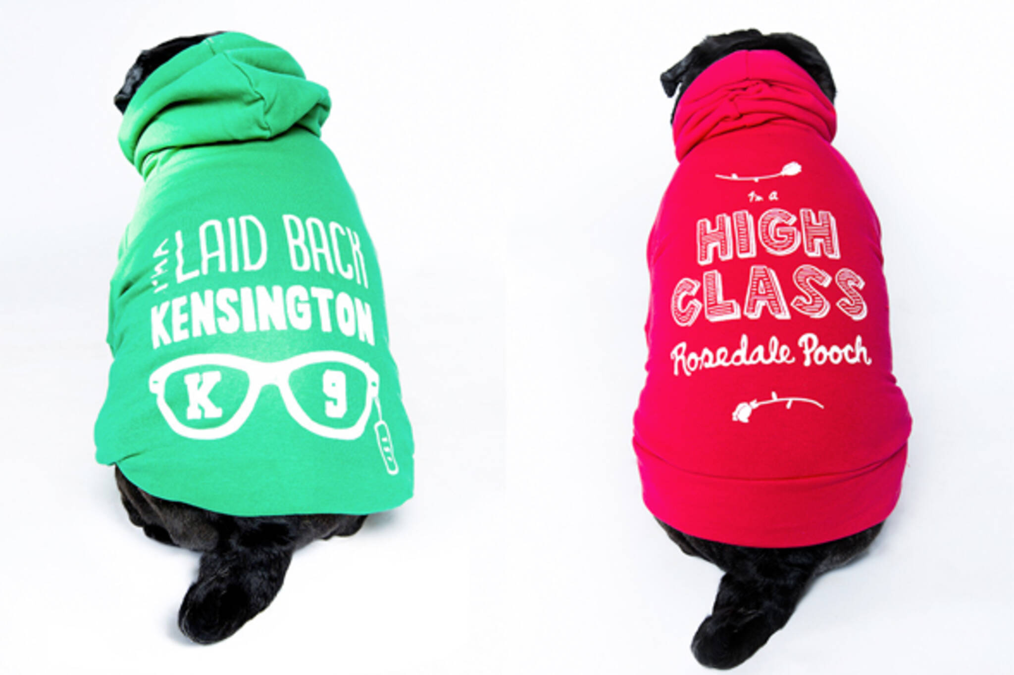 Toronto dog sweaters